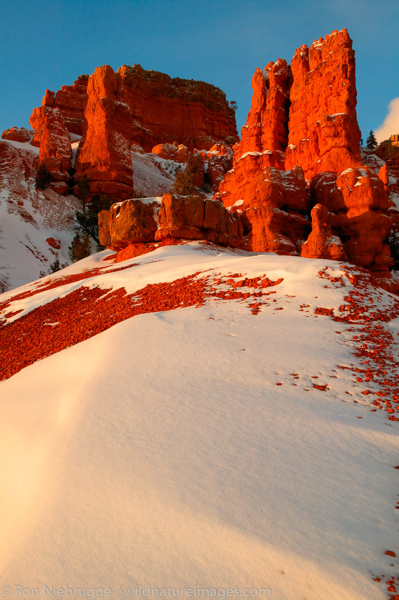 Red Canyon in the winter, Dixie National Forest, Utah.