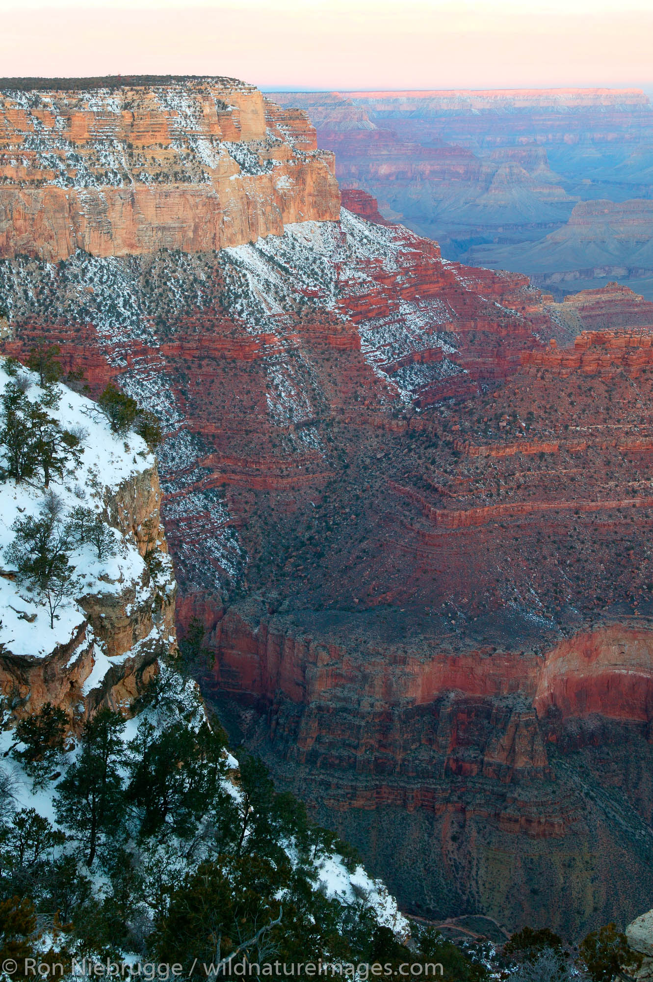 Morning at Yavapai Point, Grand Canyon National Park, Arizona.