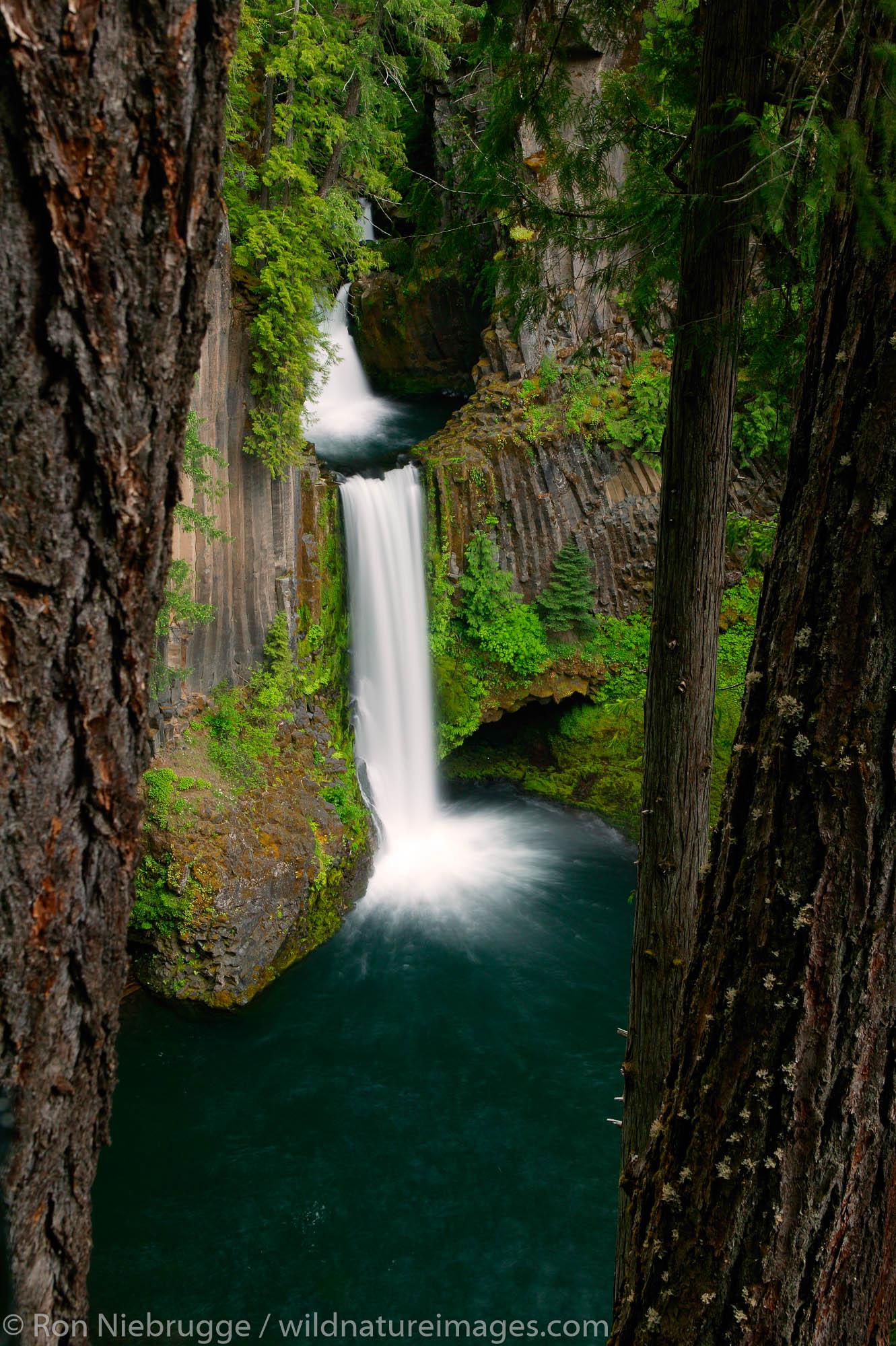 Toketee Falls in the Umpqua National Forest, Oregon