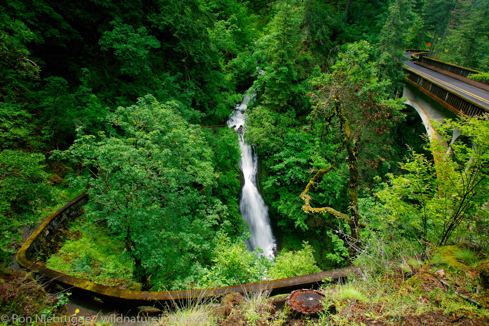 The Historic Columbia River Highway at the Shepperds Dell waterfall, Columbia River Gorge National Scenic Area, Oregon.
