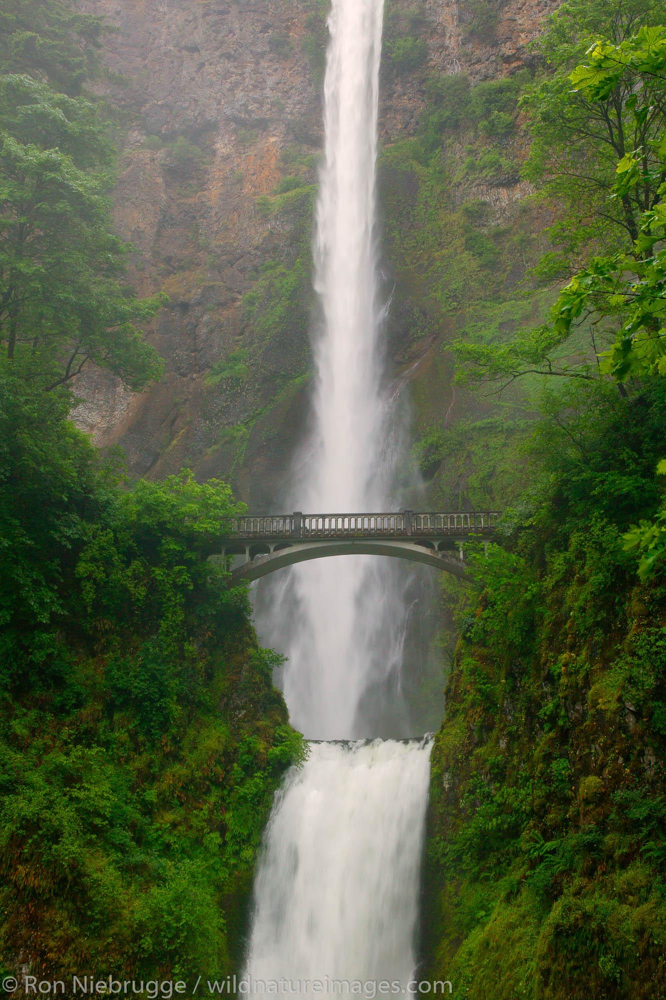 Columbia River Gorge National Scenic Area, Oregon, Multnomah Falls, photo