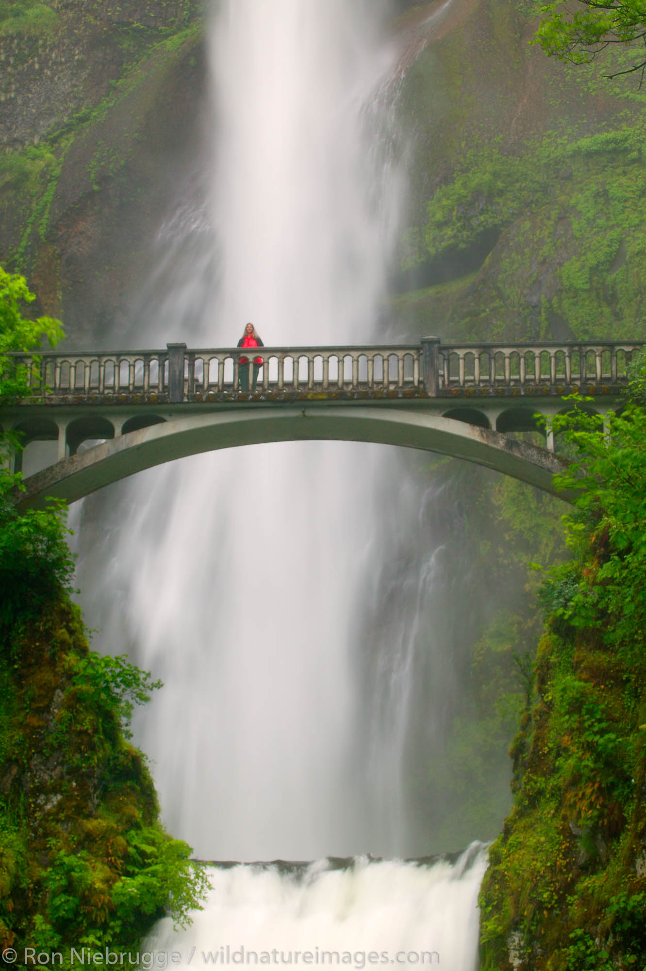 A visitor (MR) on the Benson Bridge and the Multnomah Falls off the Historic Columbia River Highway Columbia River Gorge National...