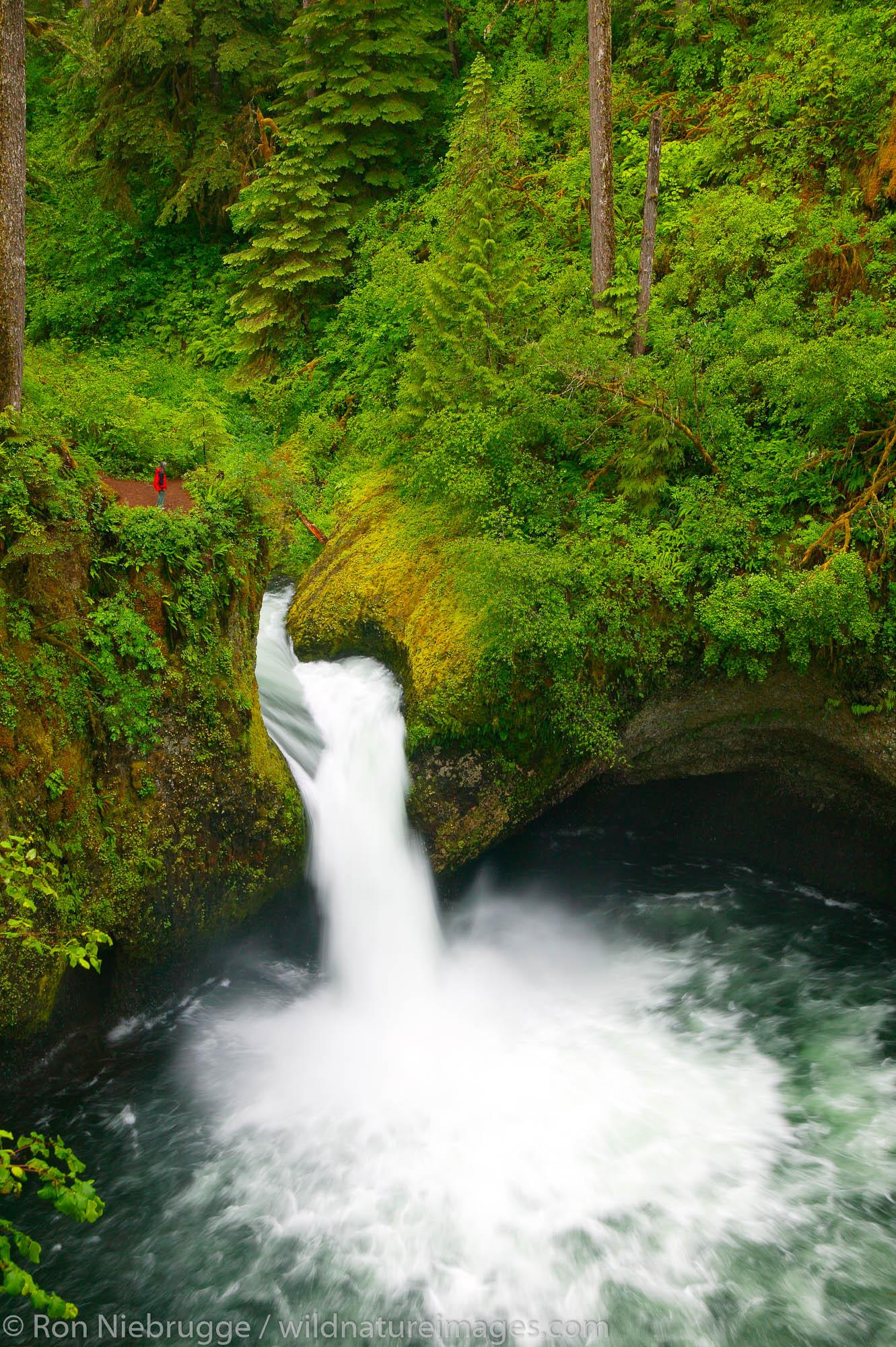 Punch Bowl Falls, photo