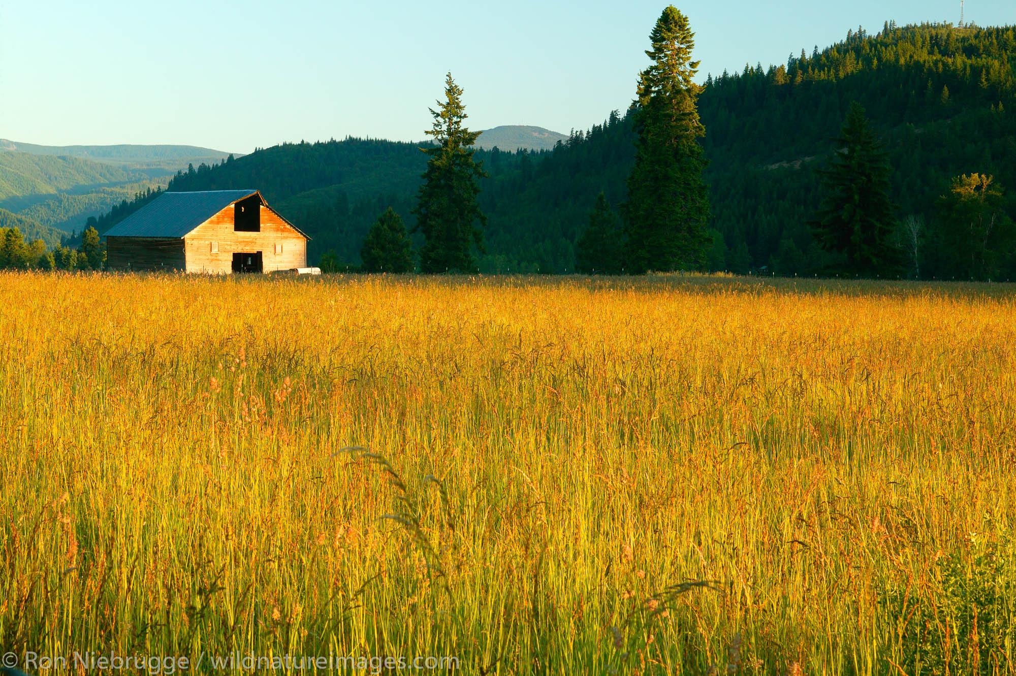 Farmland below Mt Hood, Oregon.