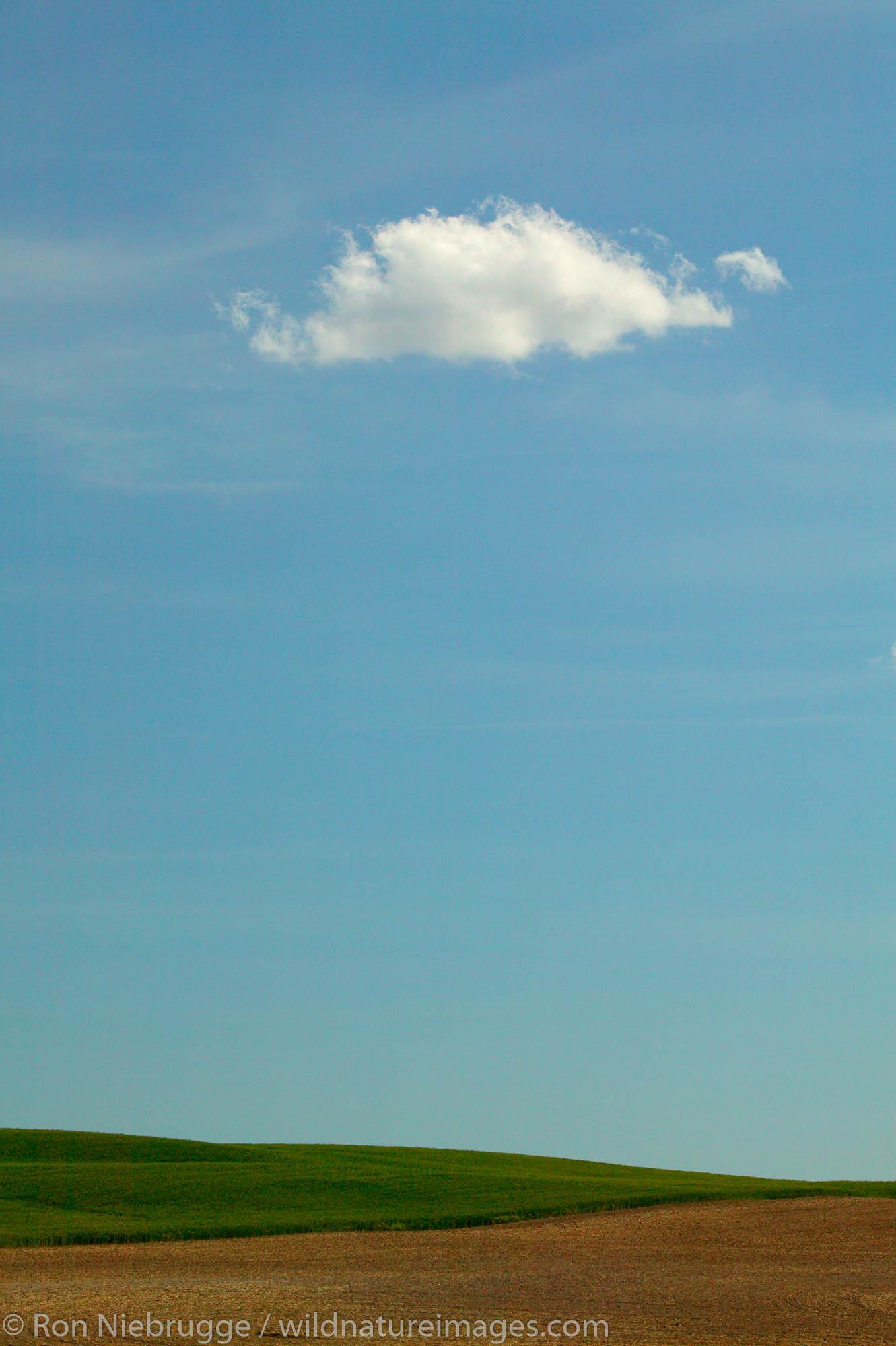 A single cloud over farmland (wheat fields) near Ritzville, Eastern Washington.