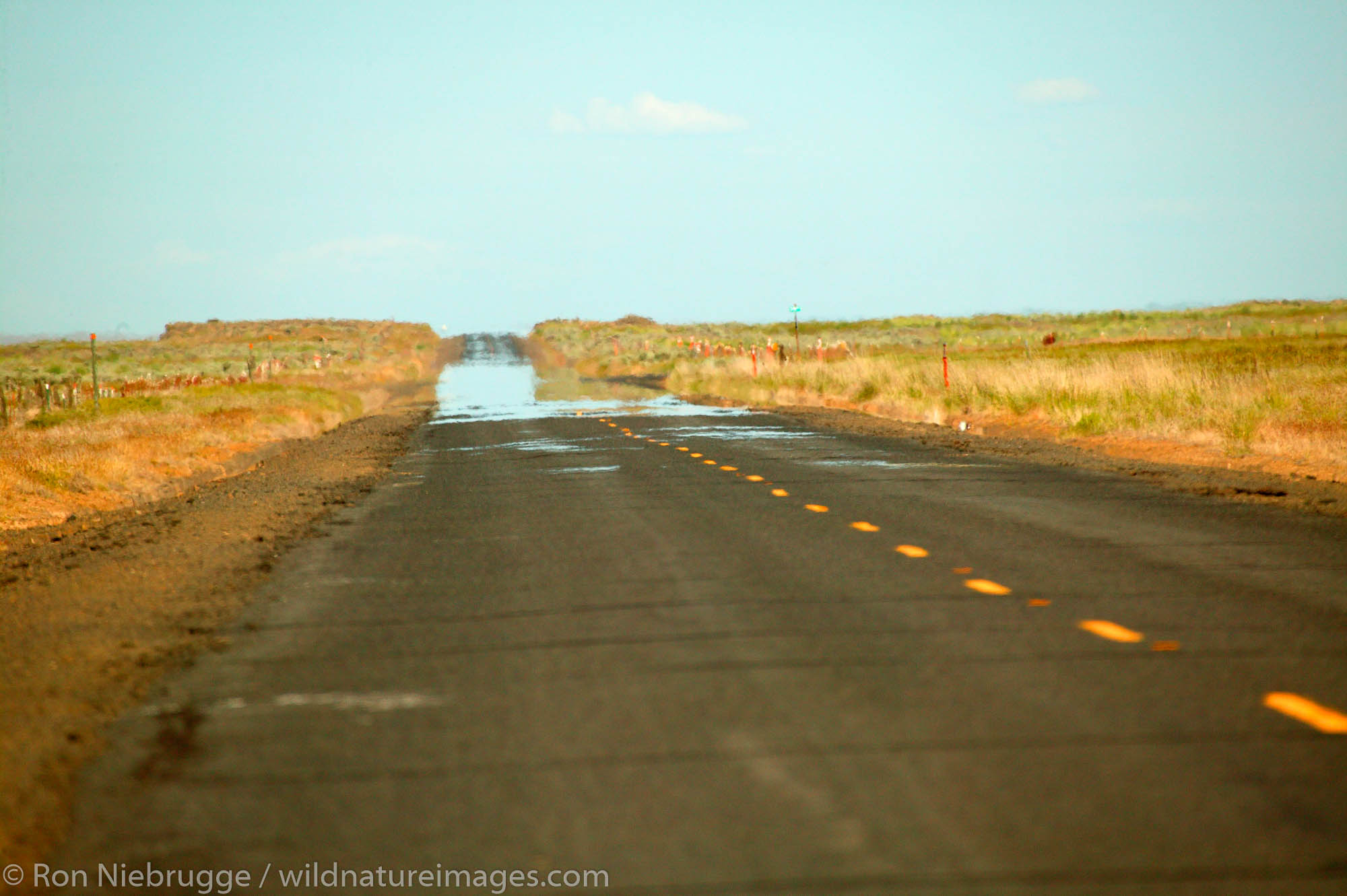 A mirage on a country road along farmland near Ritzville, Eastern Washington.