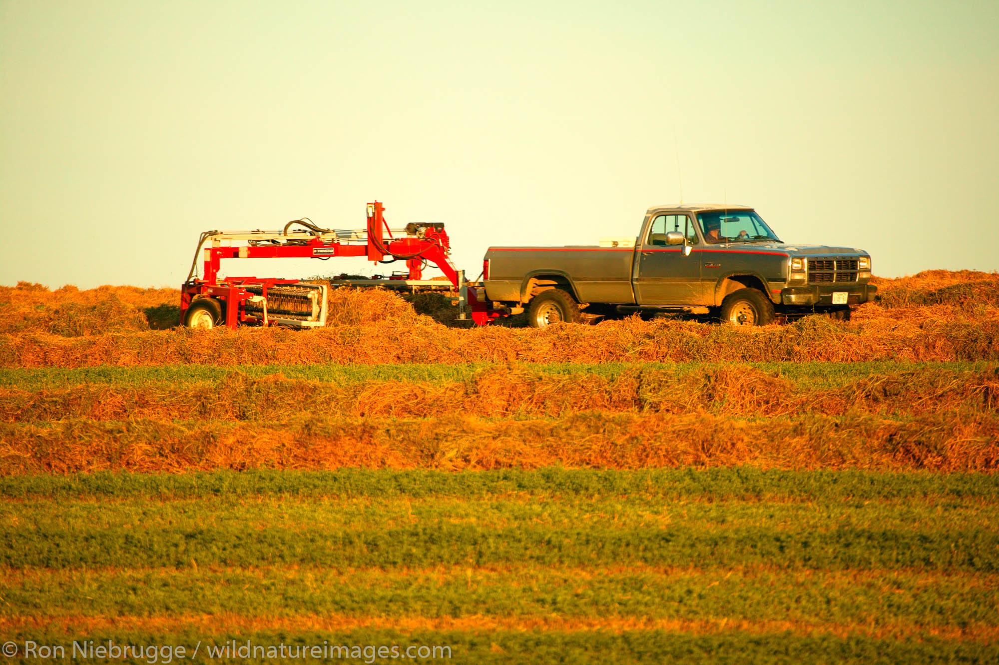 A farmer working his farmland near Ritzville in Eastern Washington.