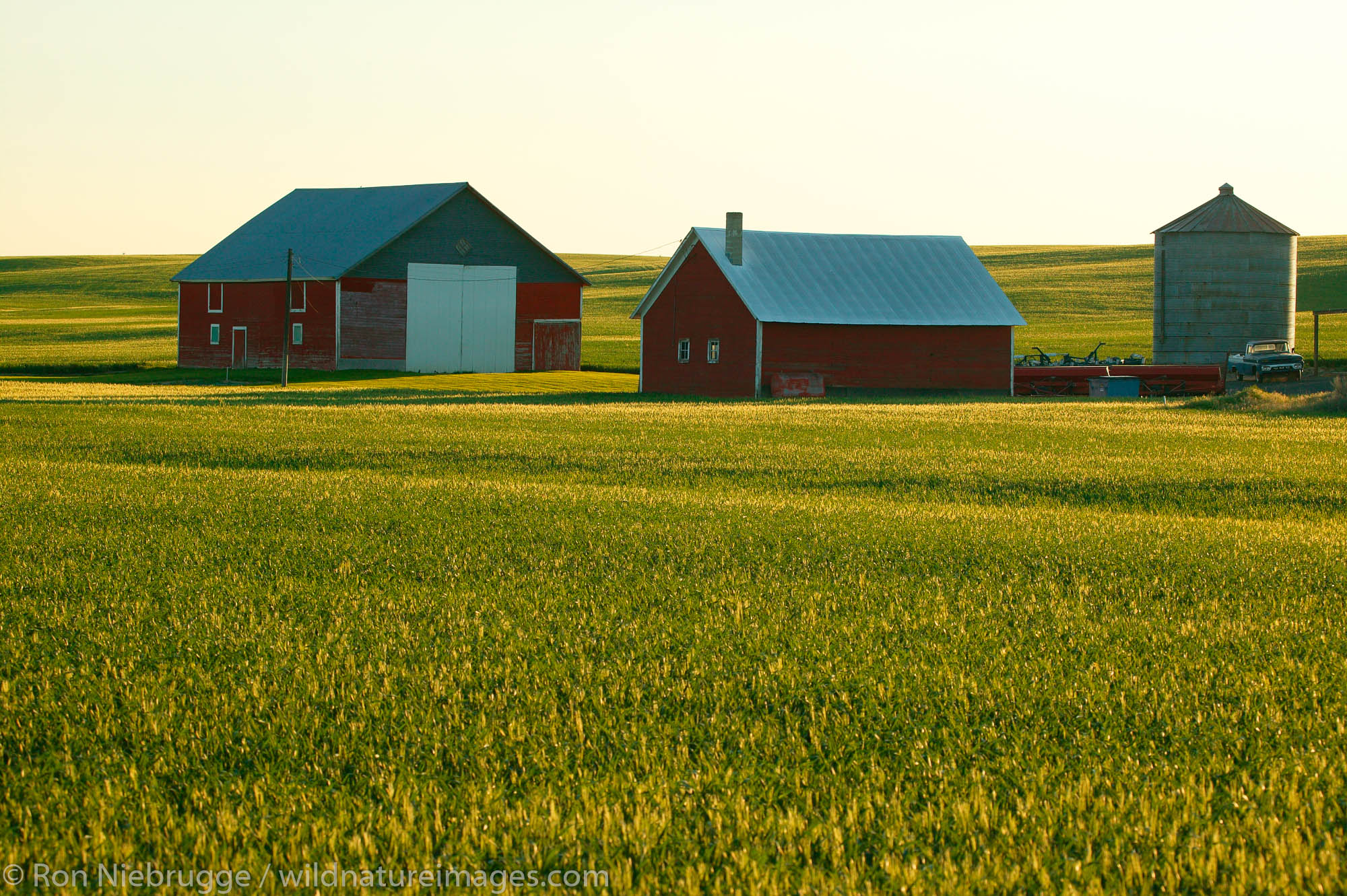 A red barn and other buildings on farmland near Ritzville in Eastern Washington.