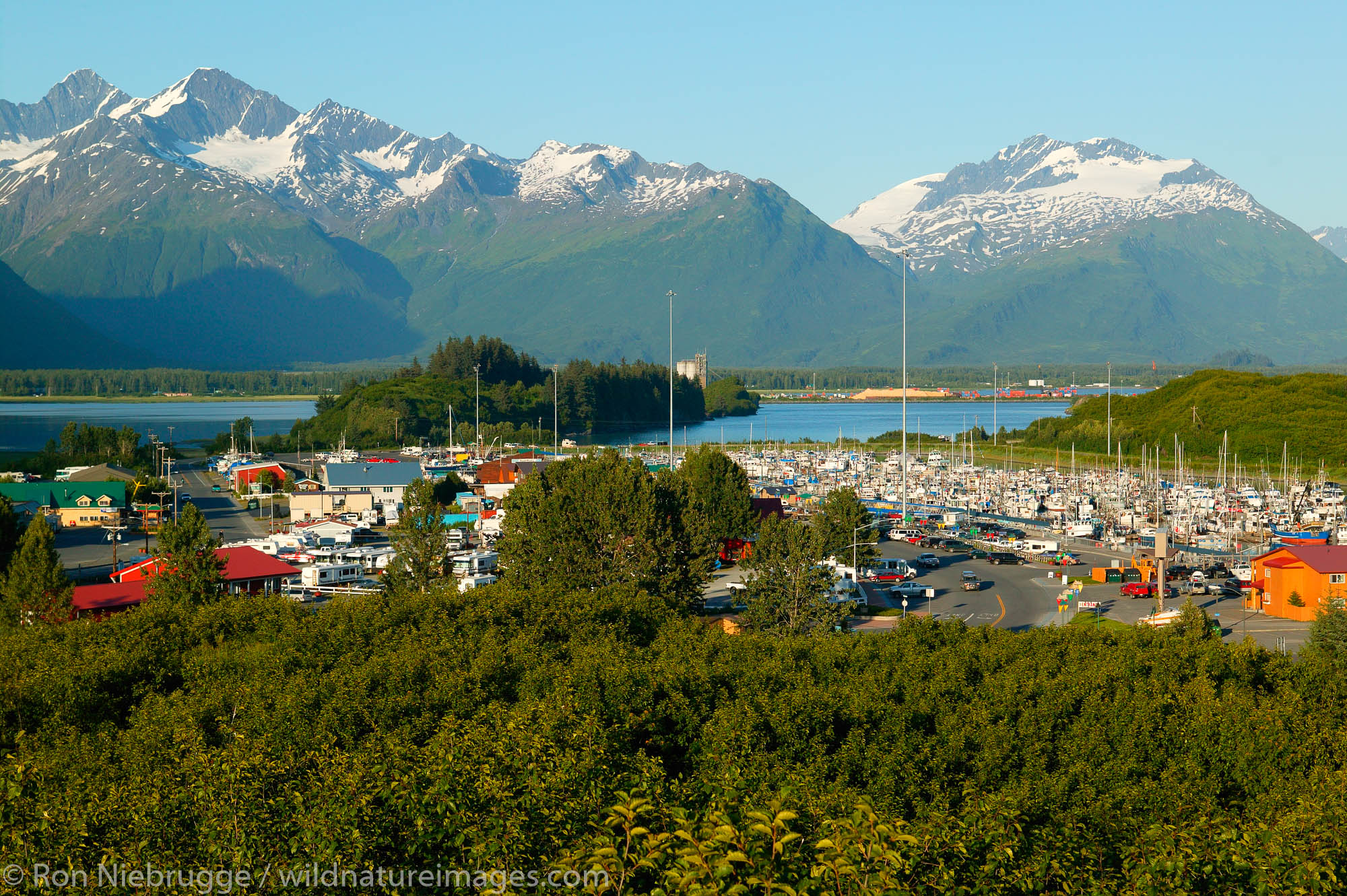 View from the overlook trail, Valdez, Alaska.