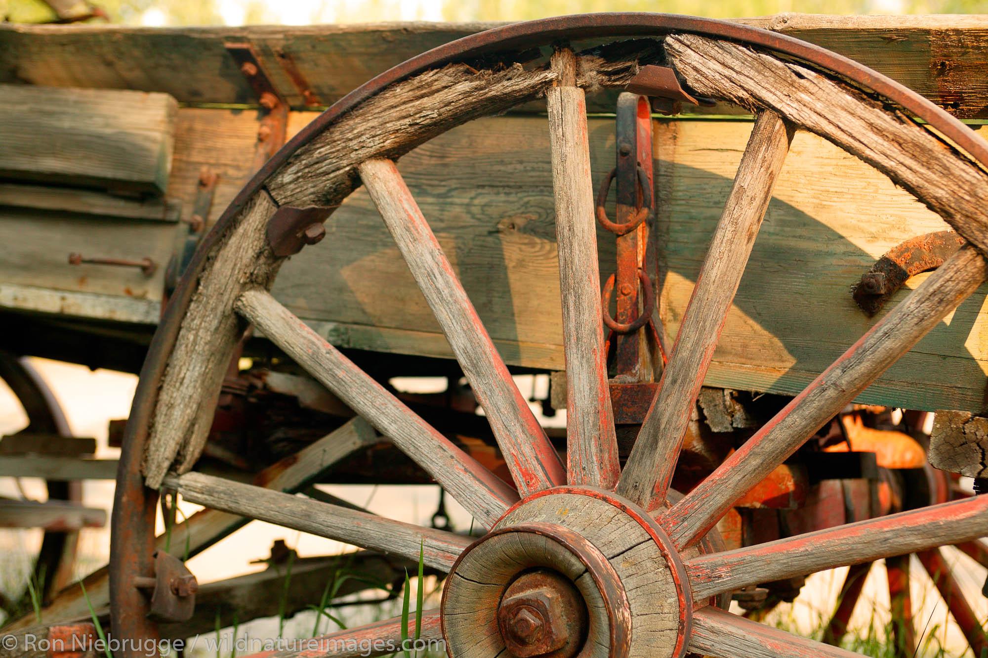 An old wagon wheel in McCarthy, Wrangell-St. Elias National Park and Preserve, Alaska.