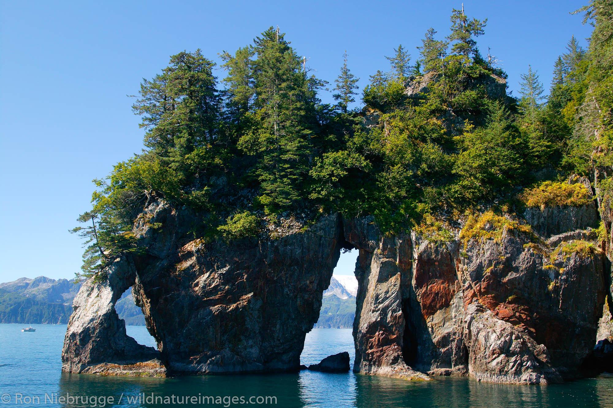 Three Hole Point at Three Hole Bay, Aialik Bay, Kenai Fjords National Park, Alaska.
