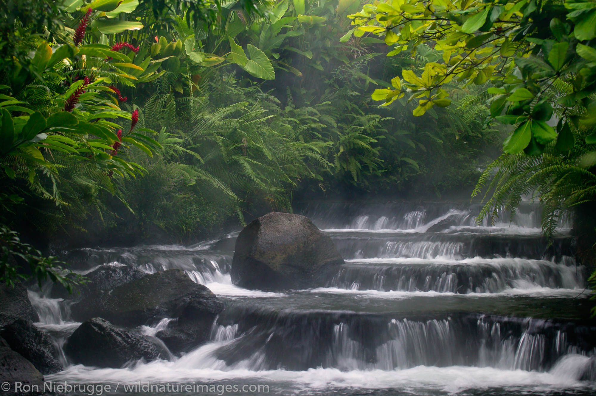 A stream flows through Tabacon Hot Spring Resort and Spa, Costa Rica.