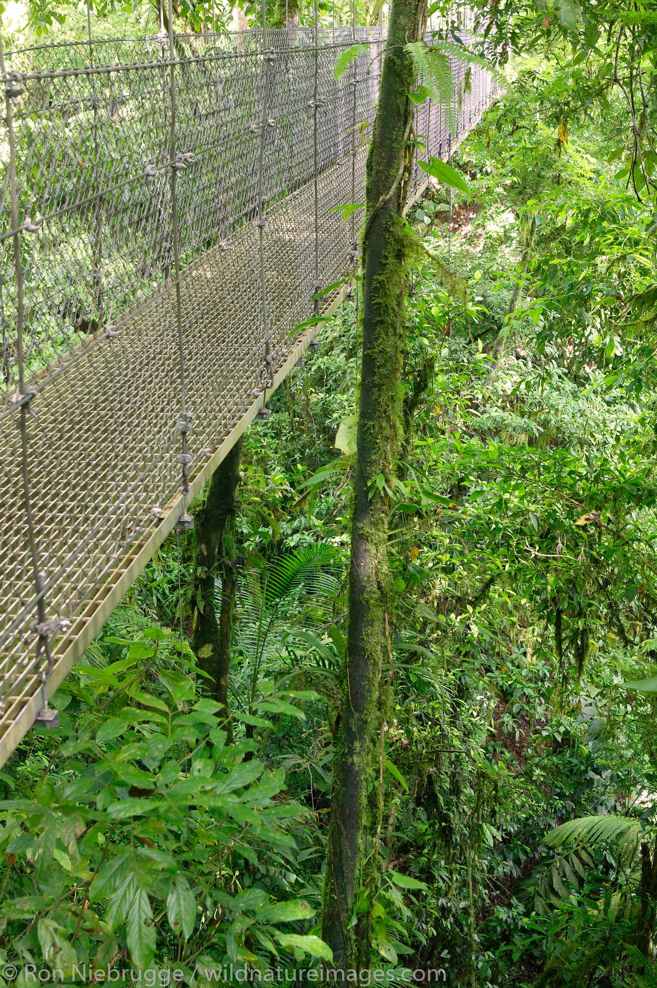 A hanging bridge on Arenal Hanging Bridges Trail, Arenal, Costa Rica.