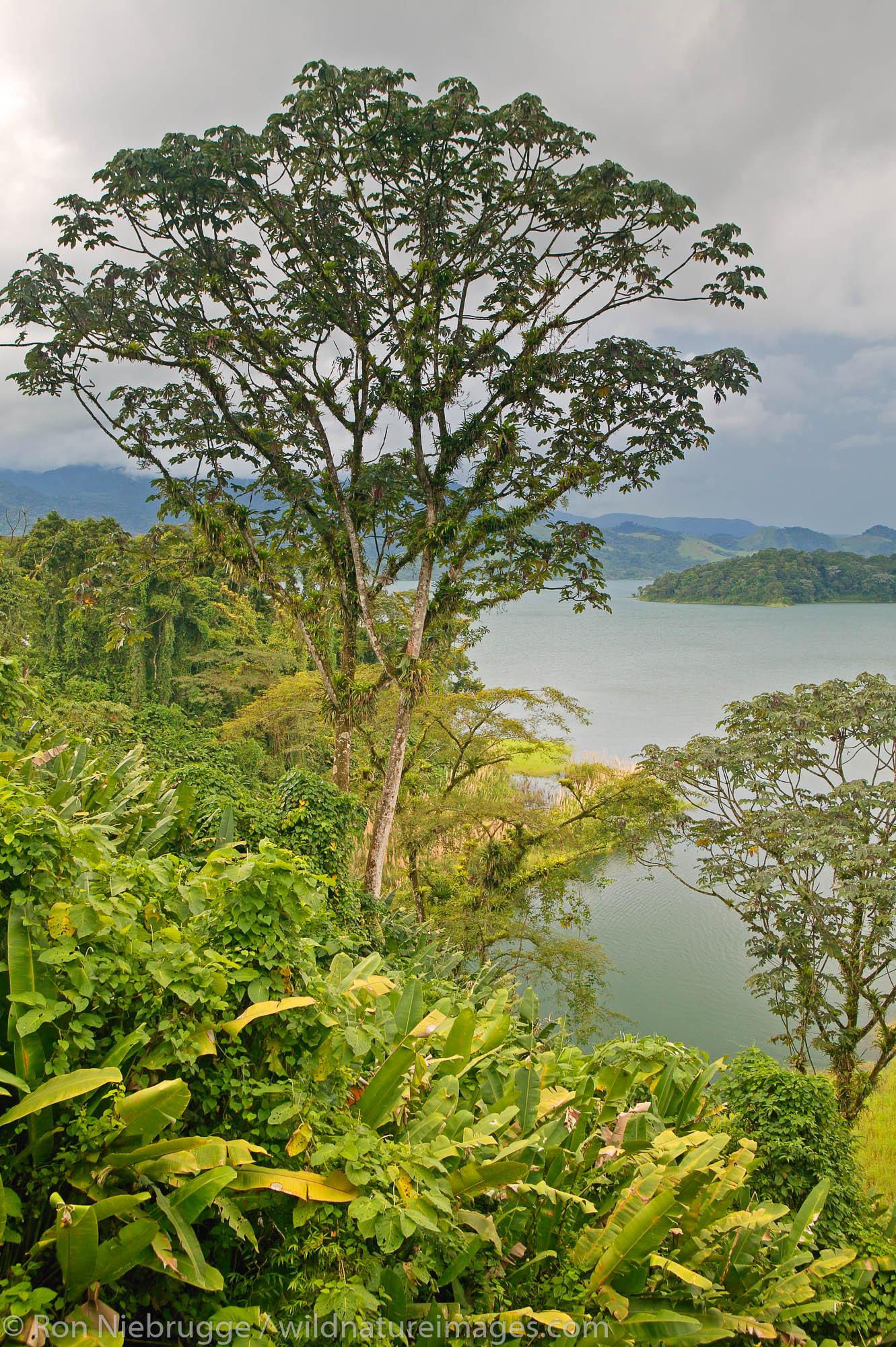 Lake Arenal, Costa Rica.