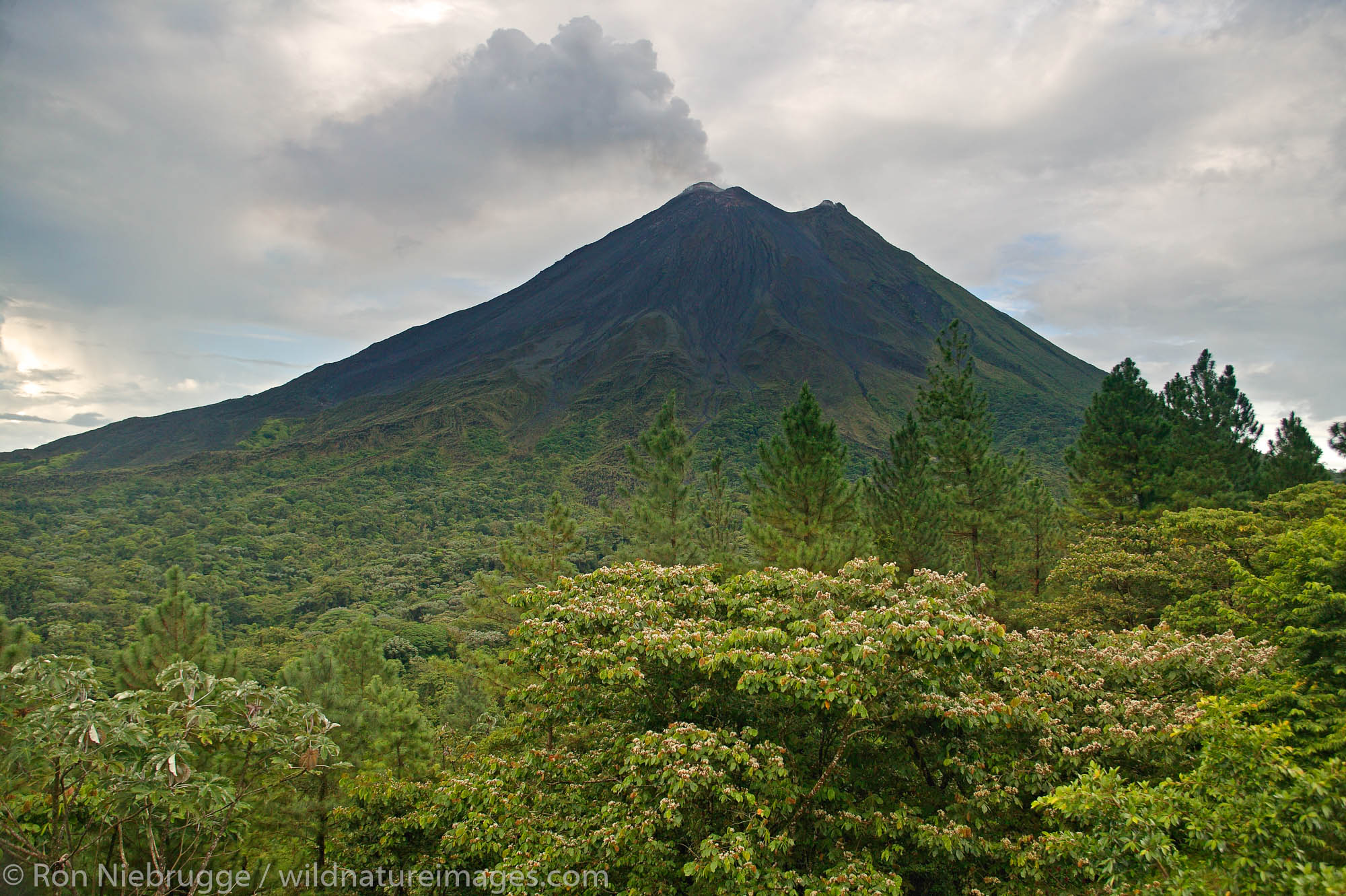 The Arenal Volcano from the Arenal Observatory Lodge which was originally built by the Smithsonian Institute for scientists to...