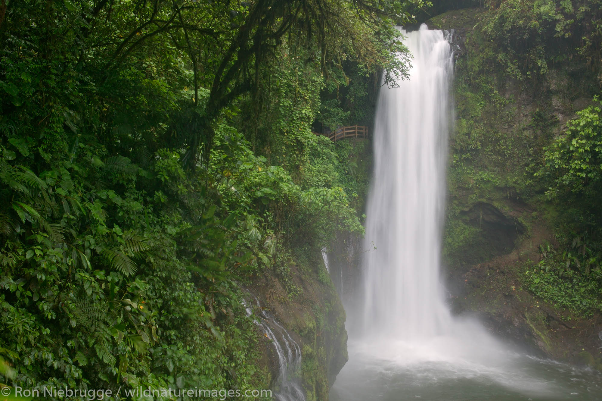The La Paz river and the Magia Blanca Falls along the trails at the La Paz Waterfall Gardens and Peace Lodge, Costa Rica.