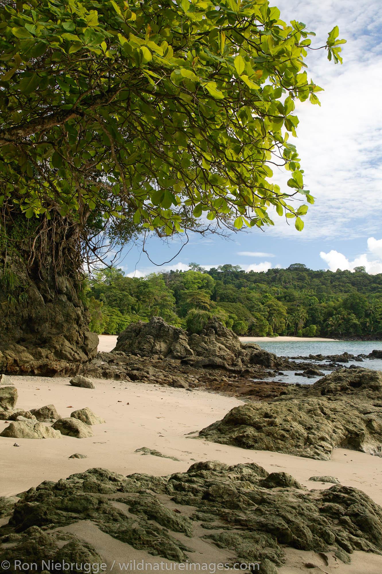 Third Beach, Manuel Antonio National Park, Manuel Antonio, Costa Rica.