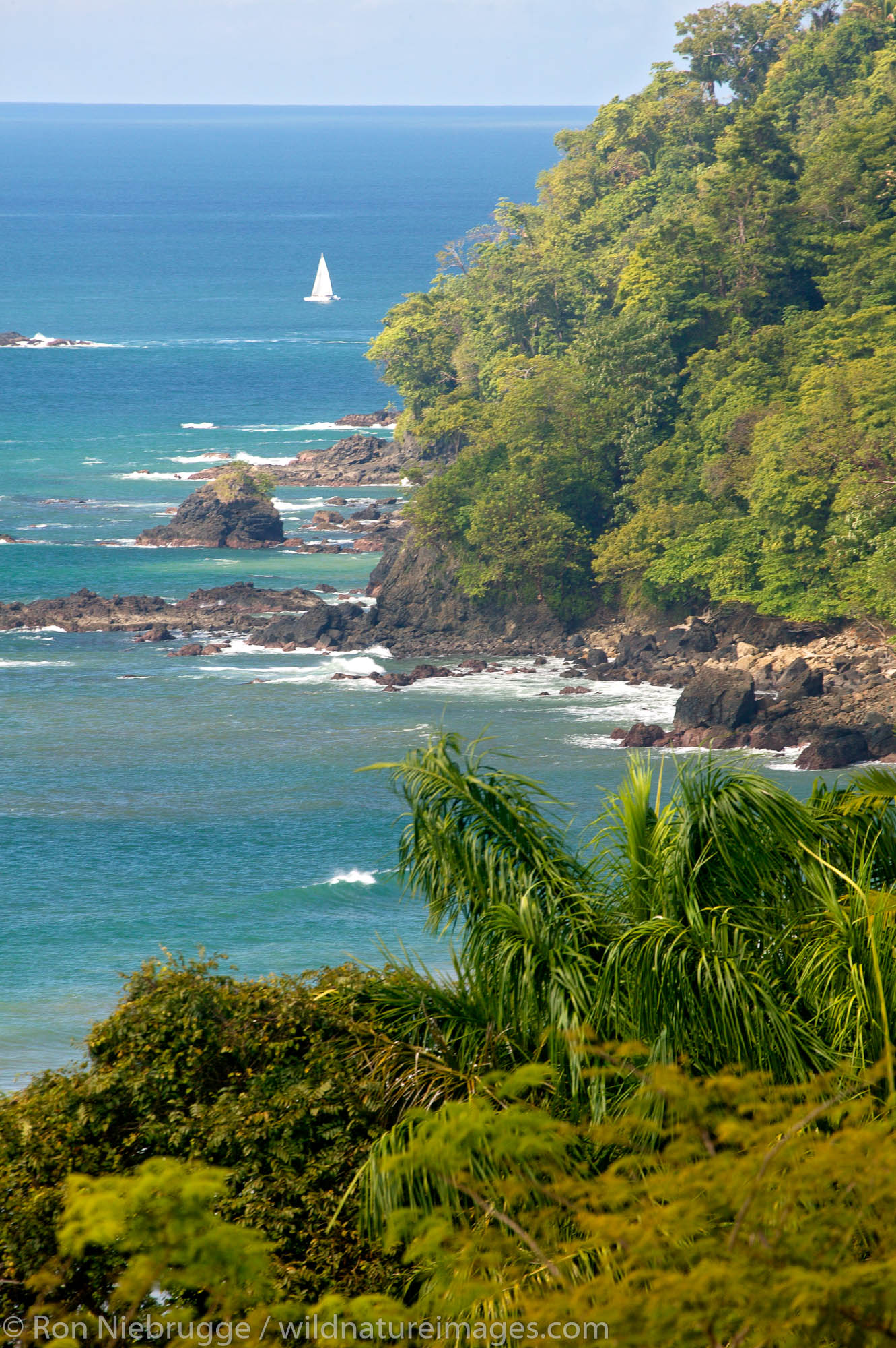 A sailboat and the Pacific Ocean from Manuel Antonio, Costa Rica.