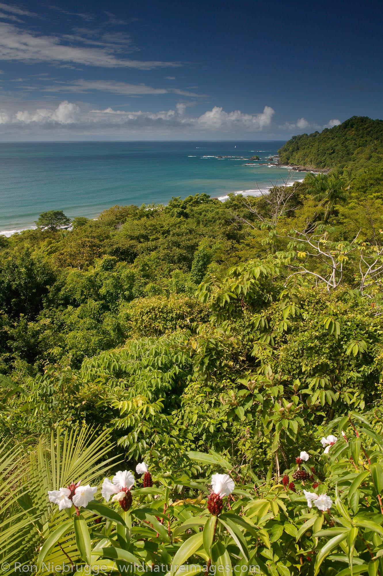The Pacific Ocean from Manuel Antonio, Costa Rica.