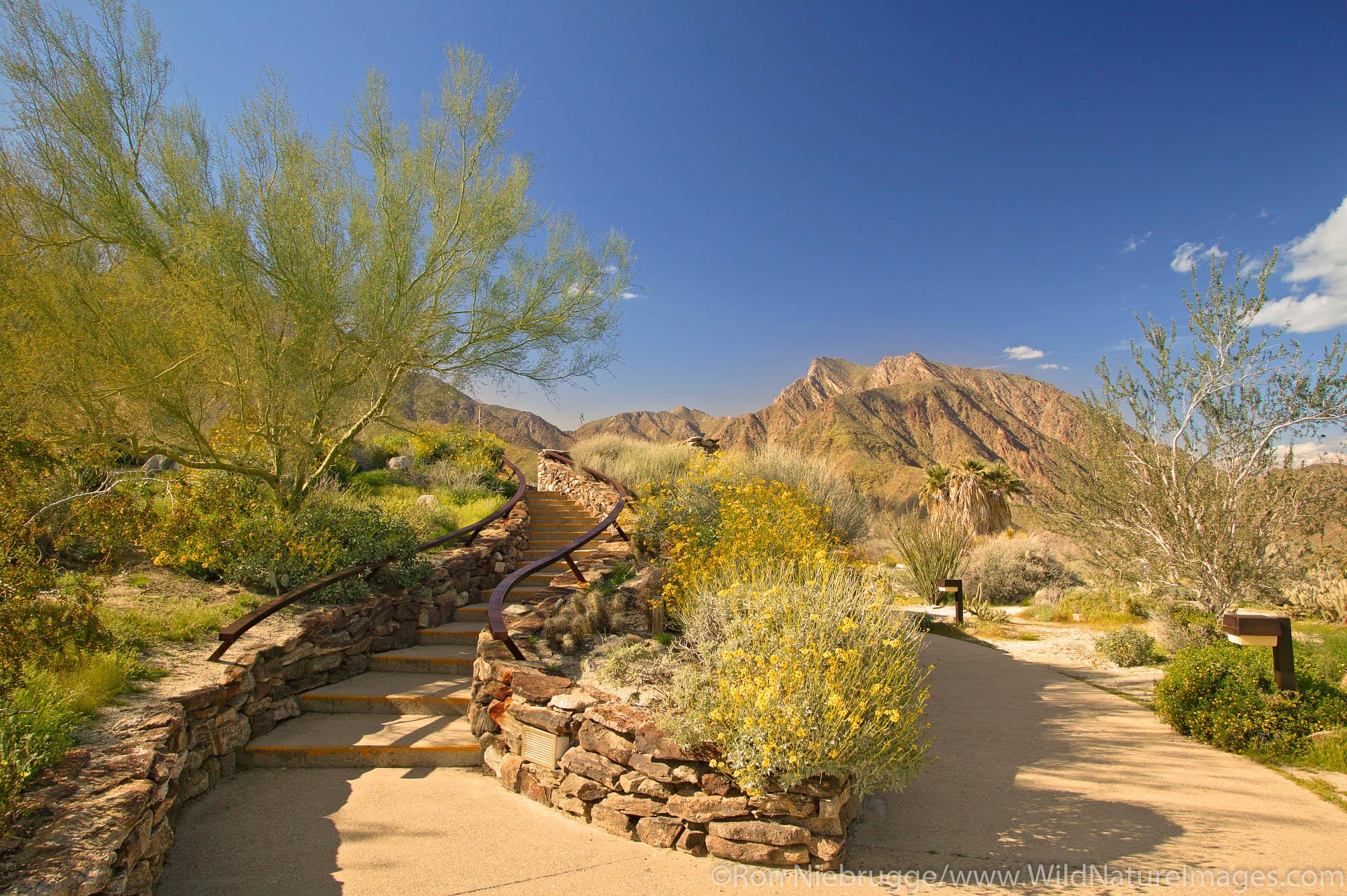 Borrego Springs Visitor Center, Anza-Borrego Desert State Park, California.