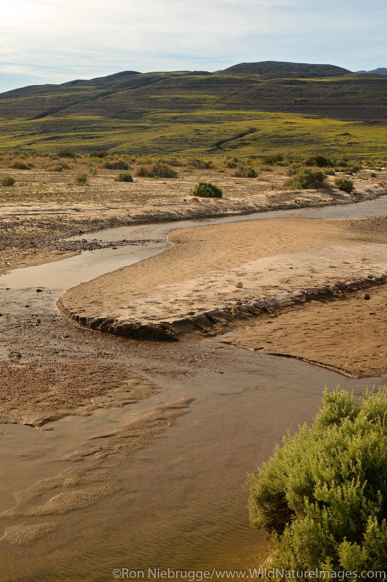 The Amargosa River near the Asford Mill ruins, Death Valley National Park, California.