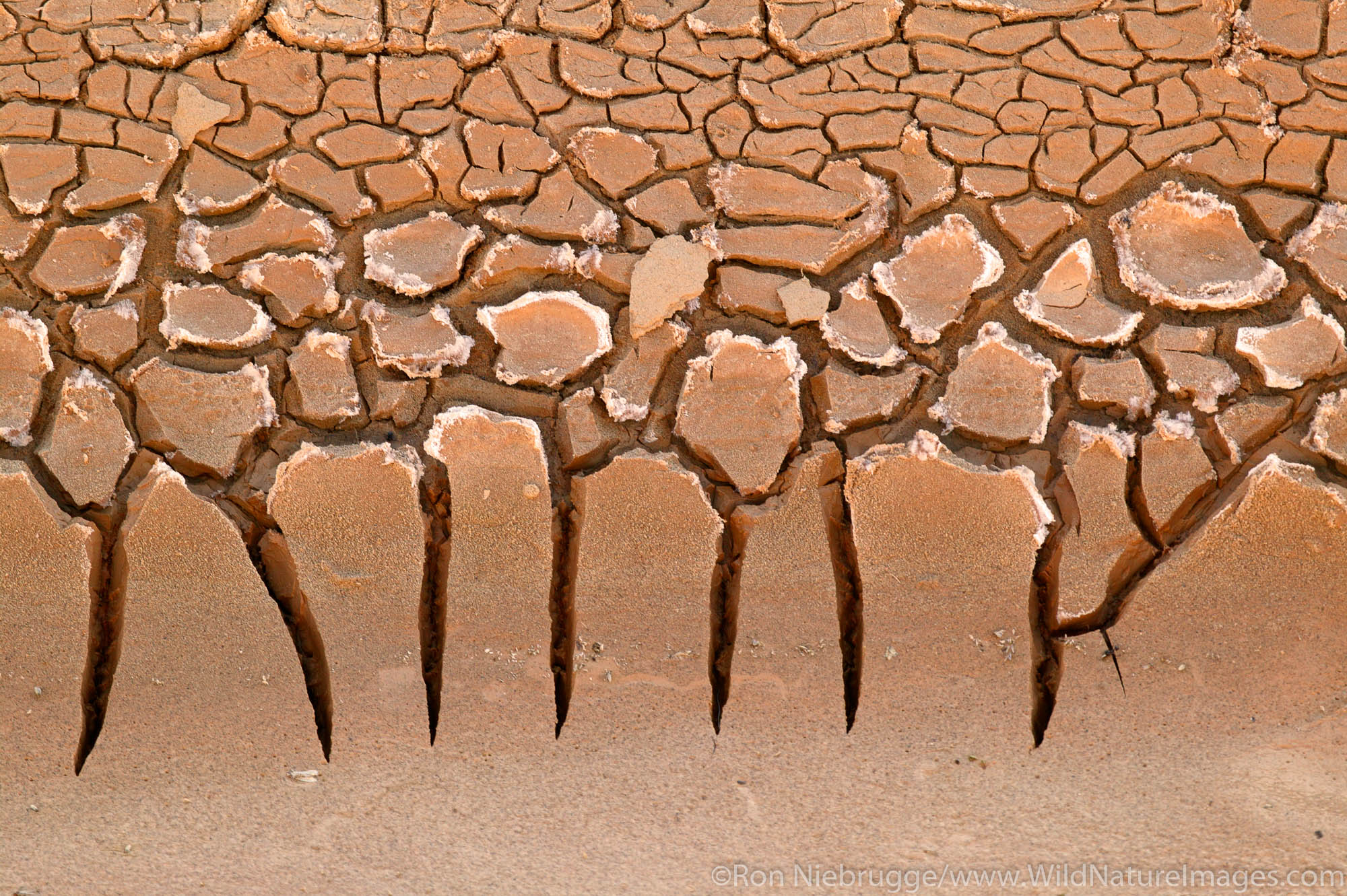 Dried mud in the Amargosa River bed, Death Valley National Park, California.