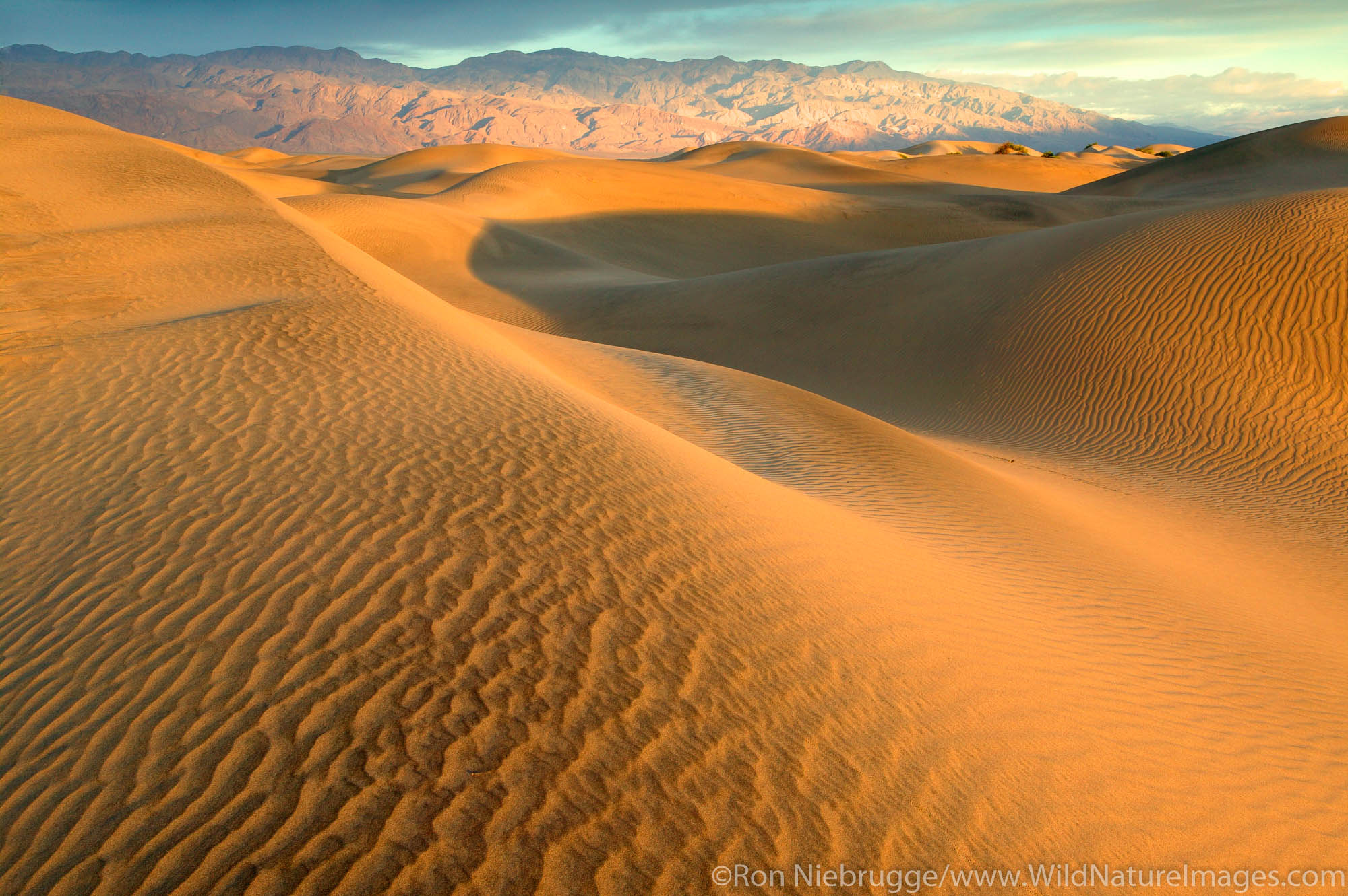 Sand dunes near Stovepipe Wells and the Cottonwood Mountains, Death Valley National Park, California.