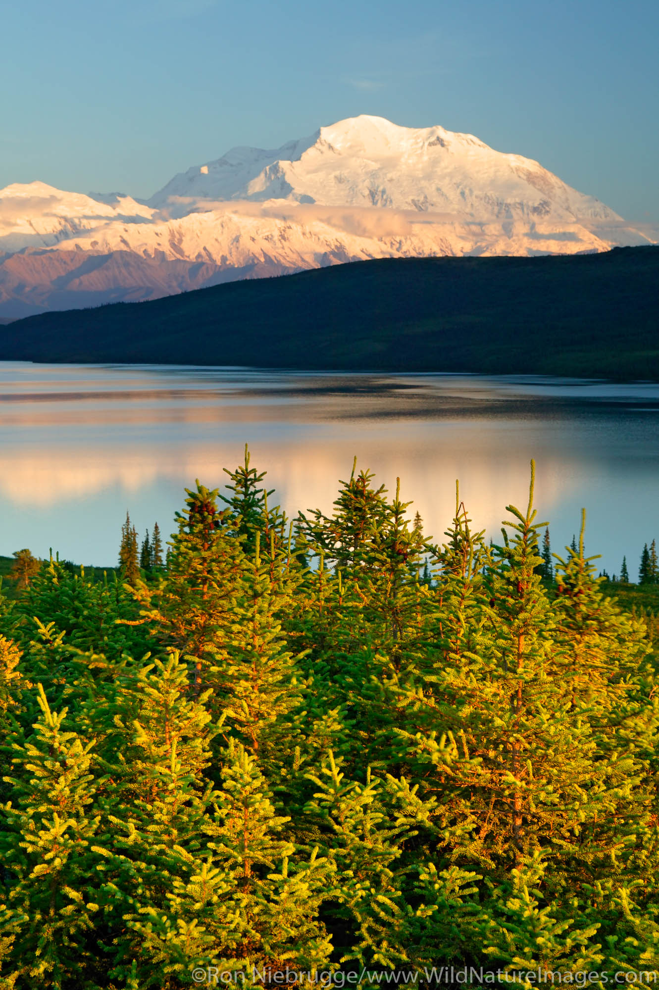Denali National Park, Alaska, photo, picture, photo