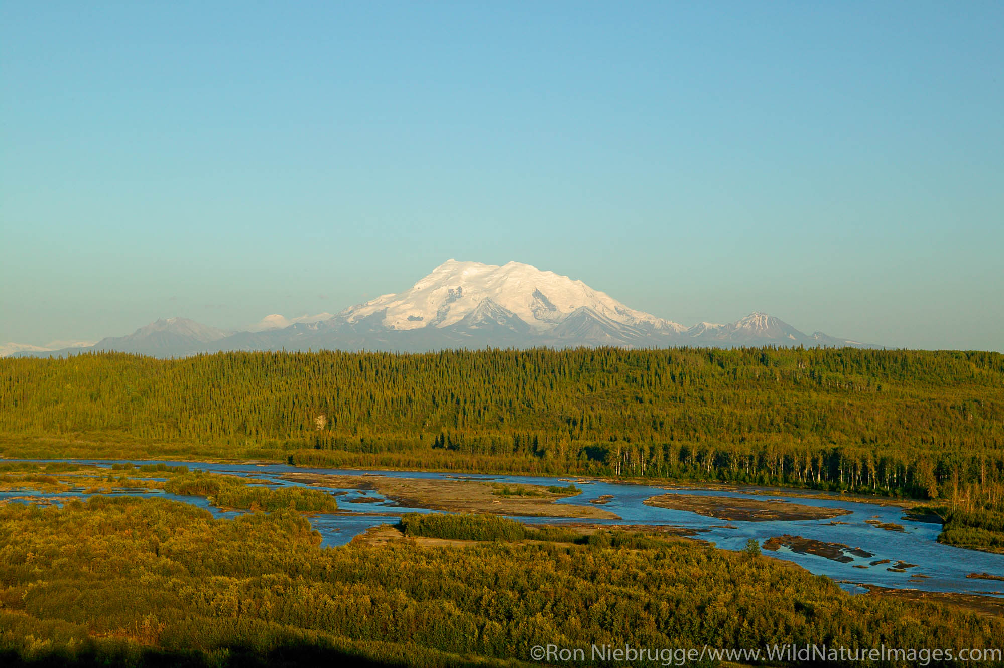 The Copper River and Mt Drum of the Wrangell-St Elias National Park in the background, Alaska.