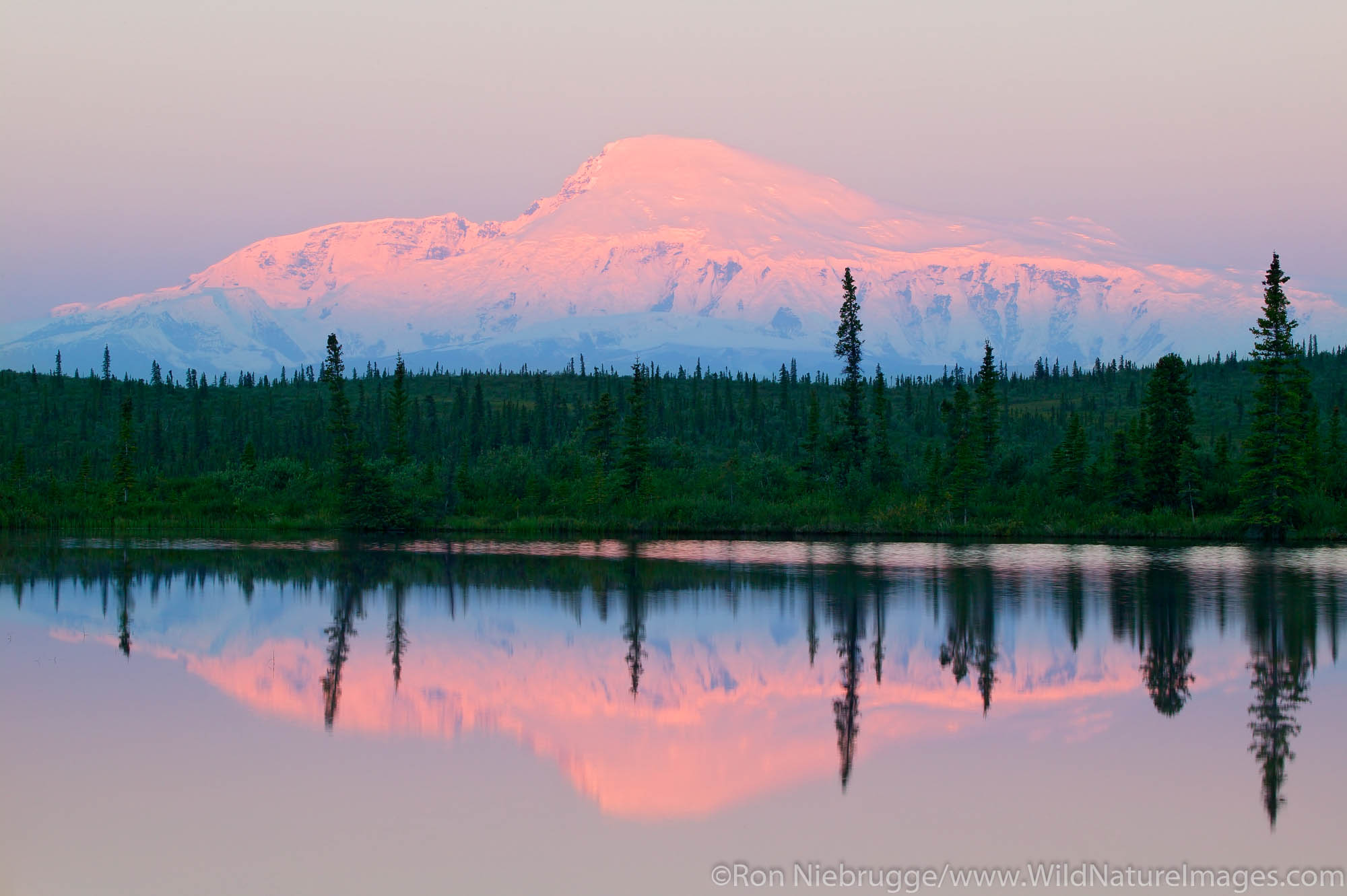 Mt. Sanford (16,237 feet) at sunrise from Rock Lake along the Nabesna Road, Wrangell-St Elias National Park, Alaska.