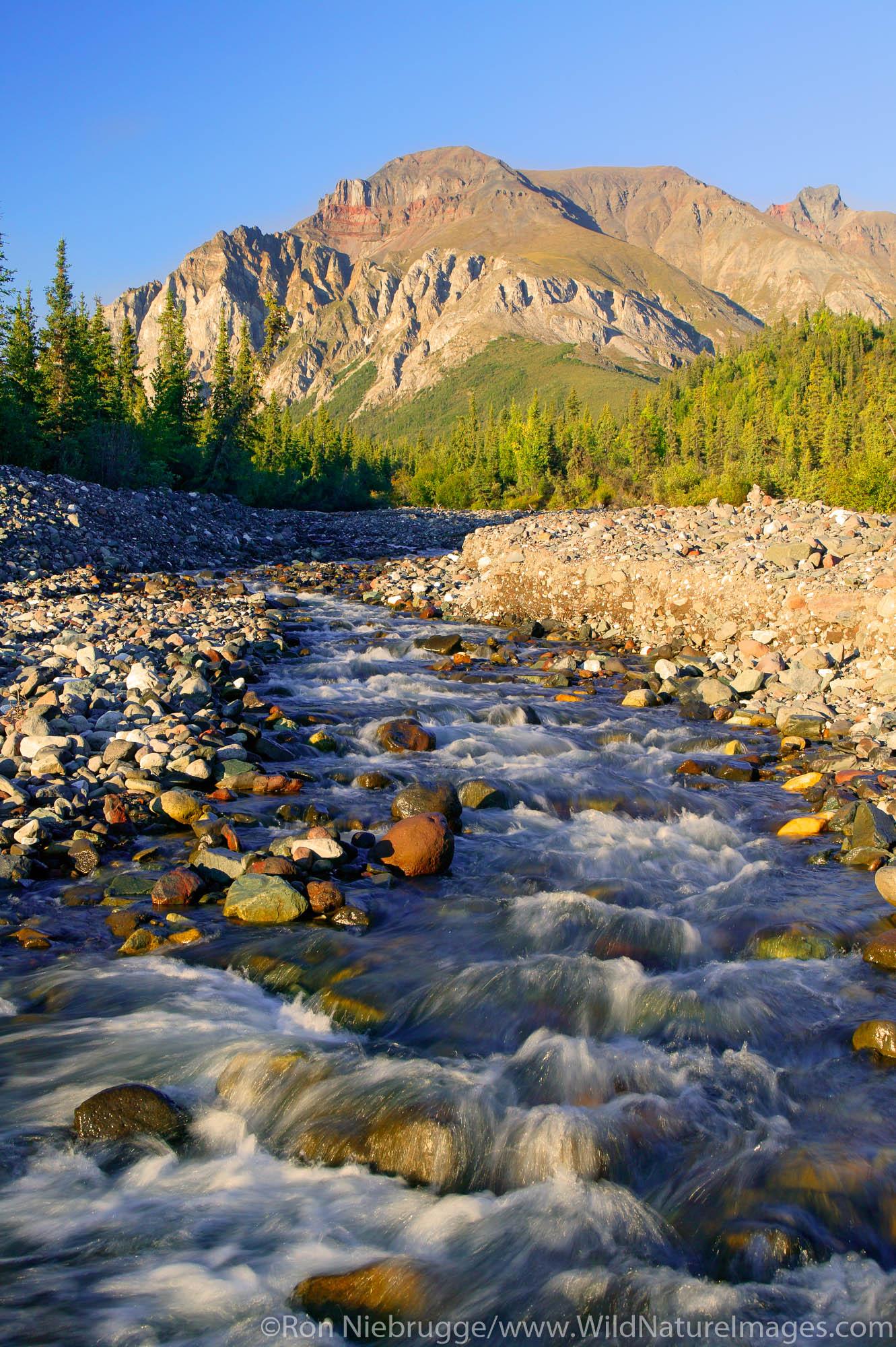 White Mountain and a creek along the Nabesna Road, Wrangell-St Elias National Park, Alaska.