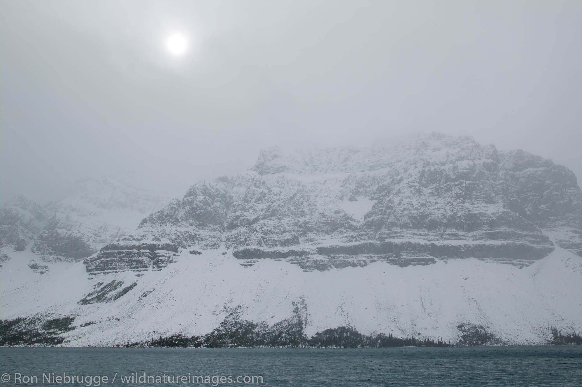 Crowfoot Mountain and Bow lake during an October snow storm, Banff National Park, Alberta, Canada.