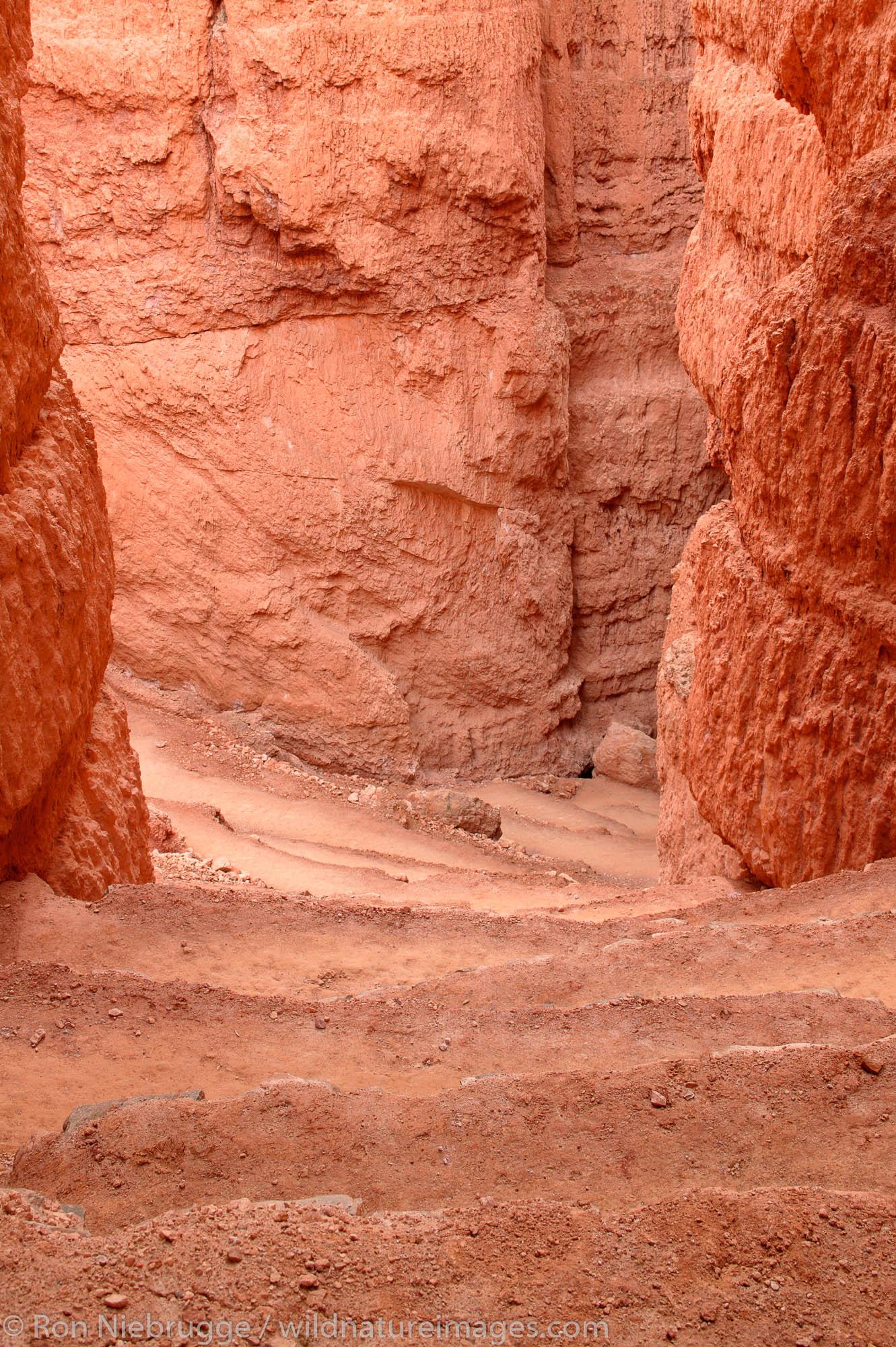 Switchbacks on the Navajo Loop Trail, Bryce National Park, Utah.