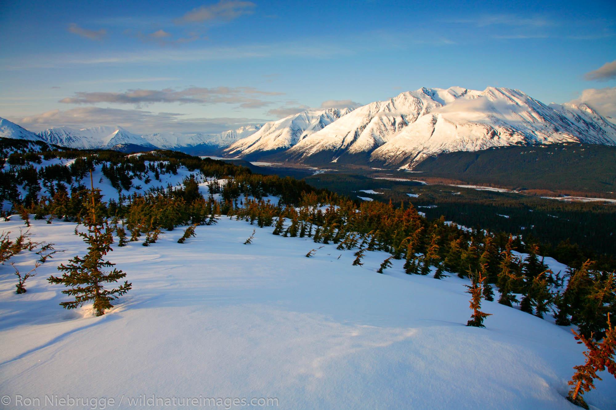 Lost Lake region, Chugach National Forest, near Seward, Alaska.