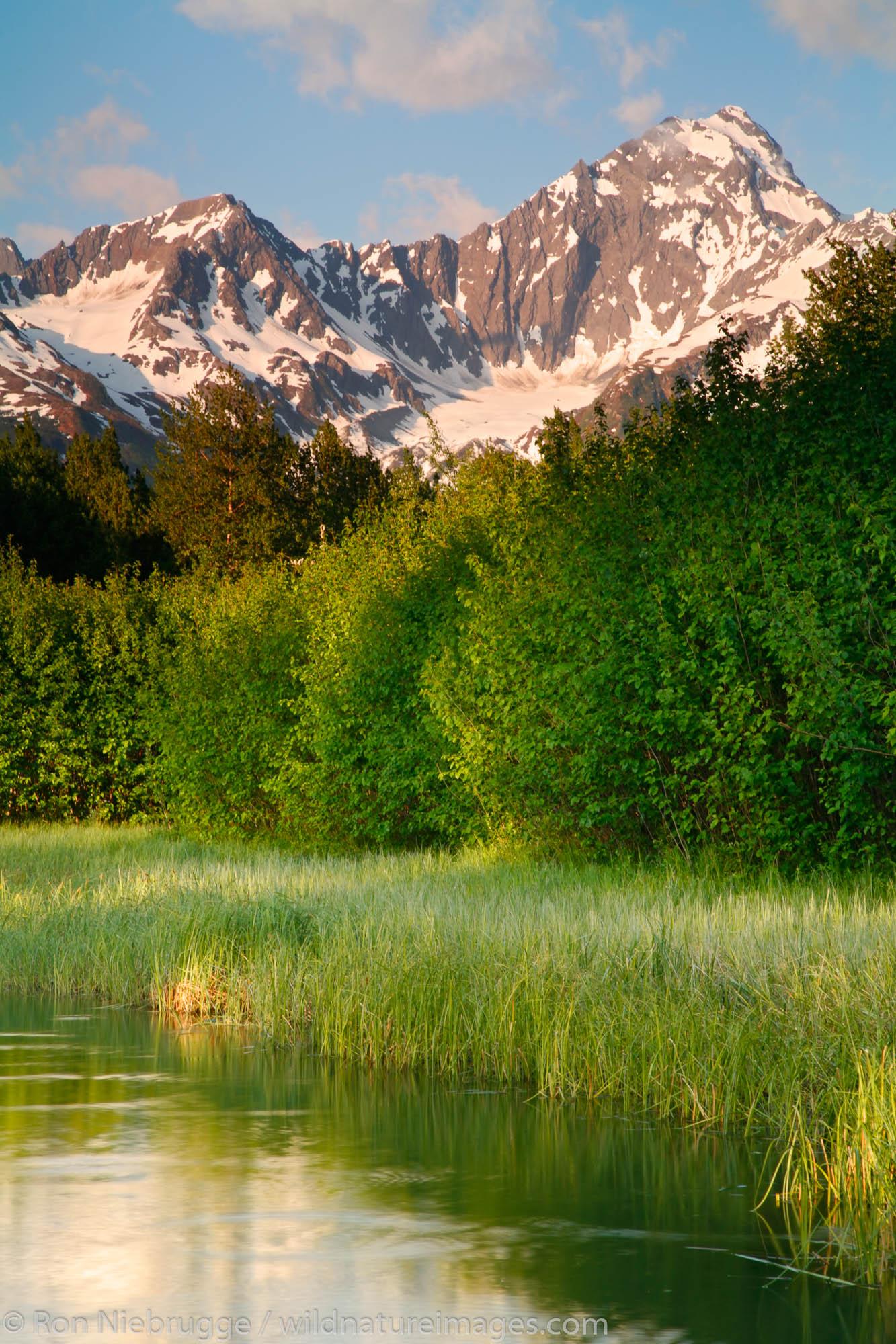 Mt. Alice and a small pond on the Kenai Peninsula, Chugach National Forest, Seward, Alaska.