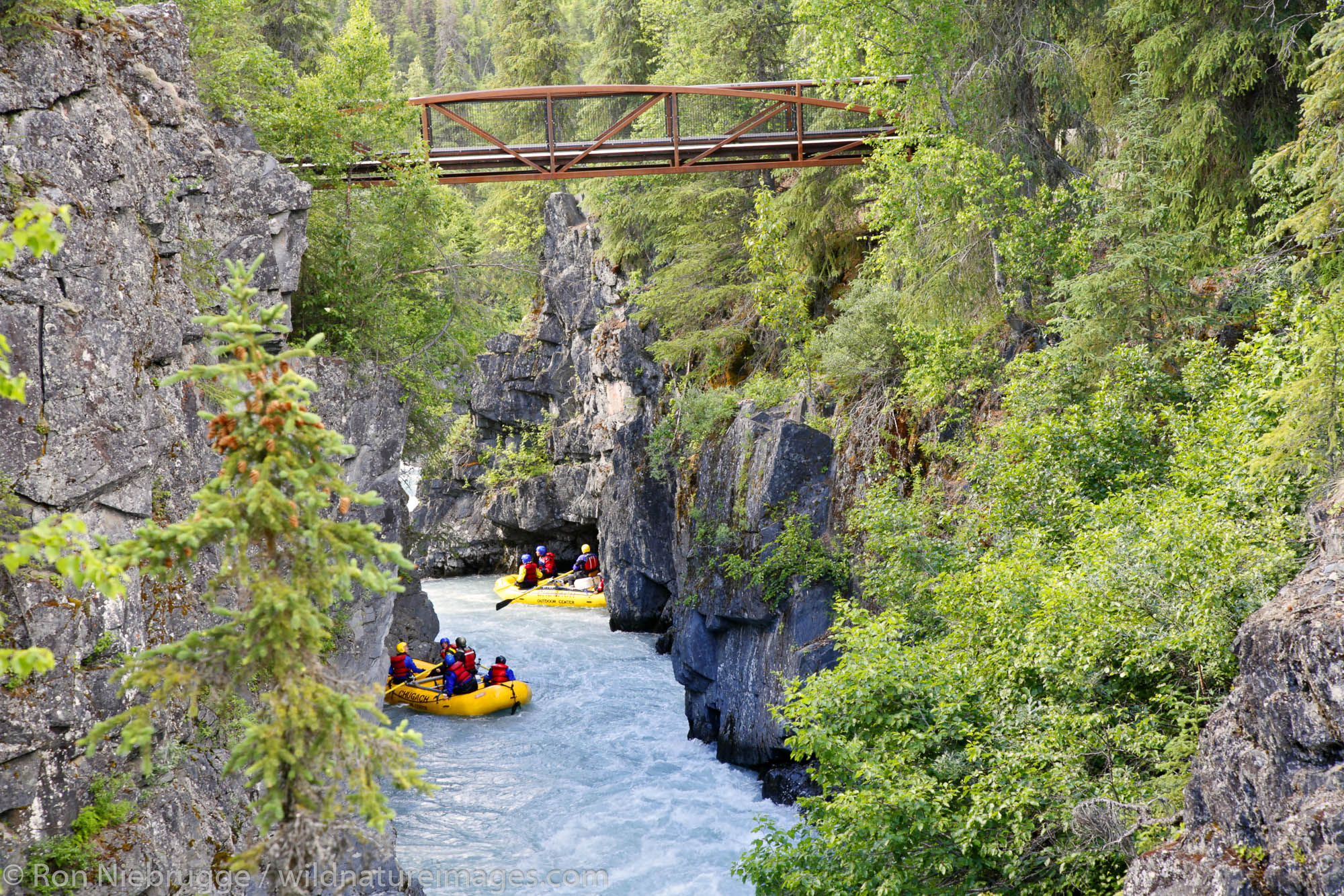White Water Rafting Six Mile Creek, Kenai Peninsula, Chugach National Forest, Alaska.