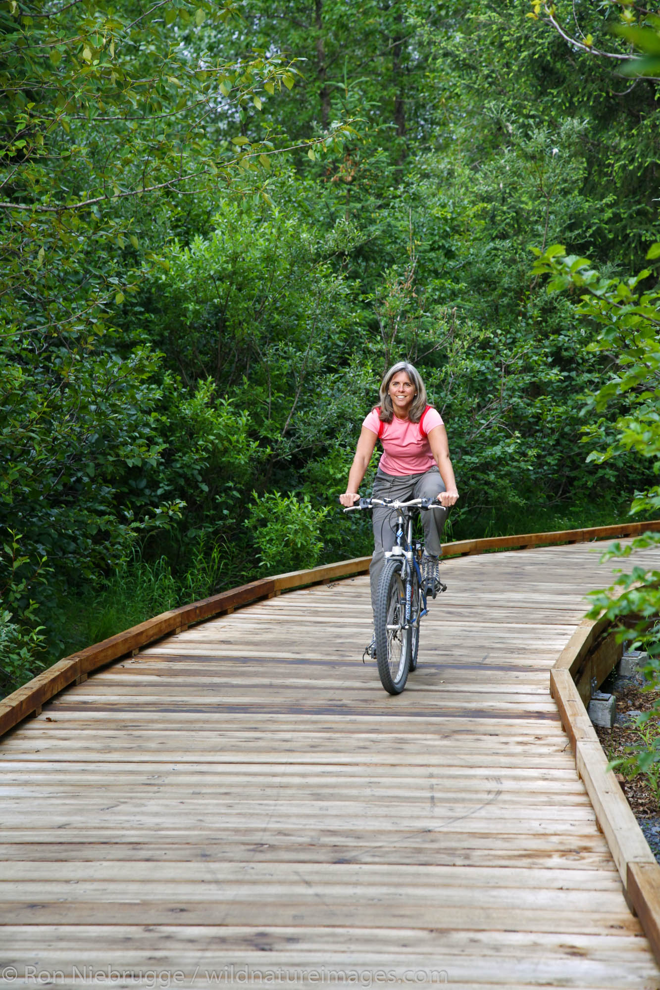 Bike riding on the Trail of Blue Ice, Portage Valley, Chugach National Forest, Alaska. (MR)