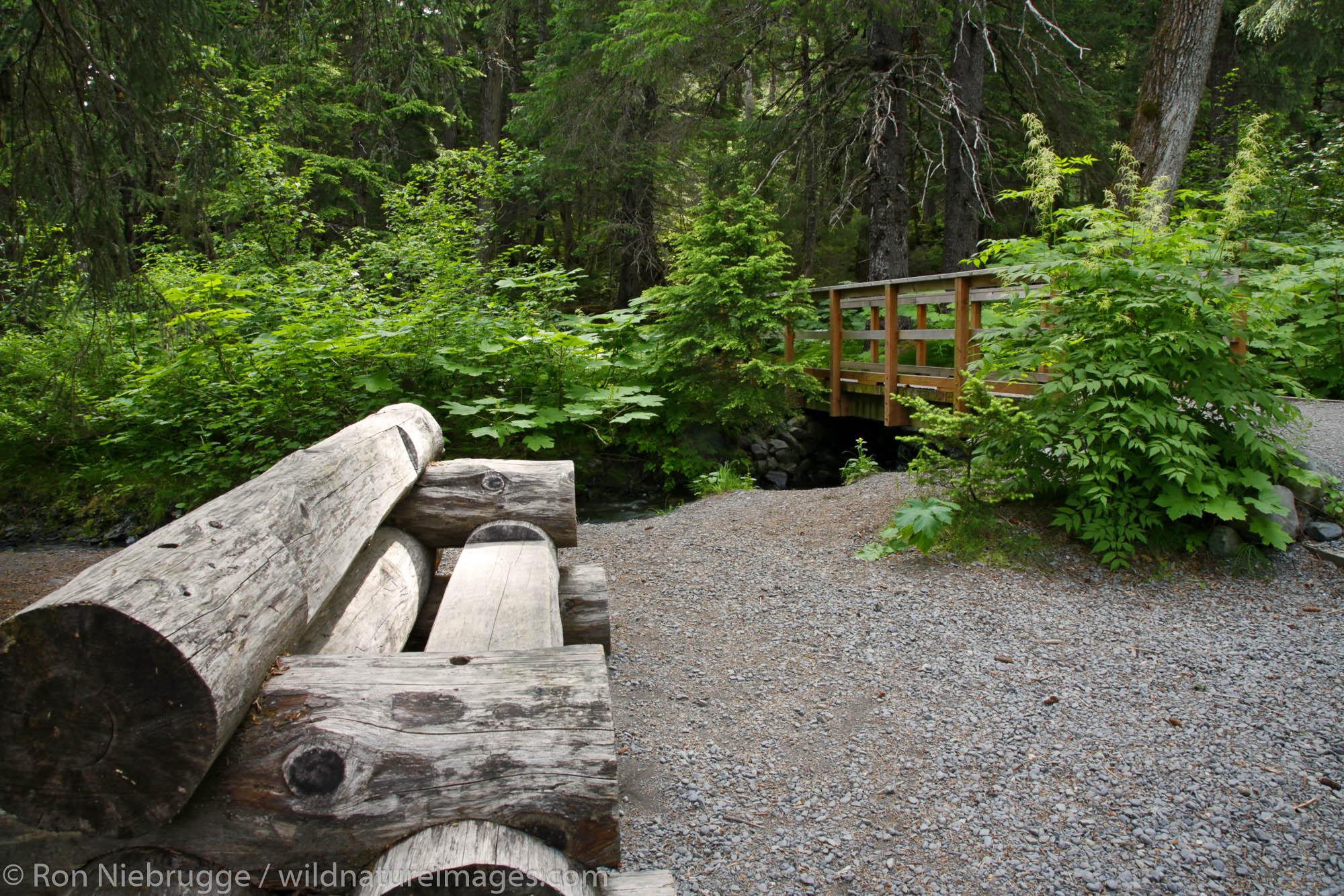 A bench along the Winner Creek Gorge Trail, Girdwood, Chugach National Forest, Alaska.