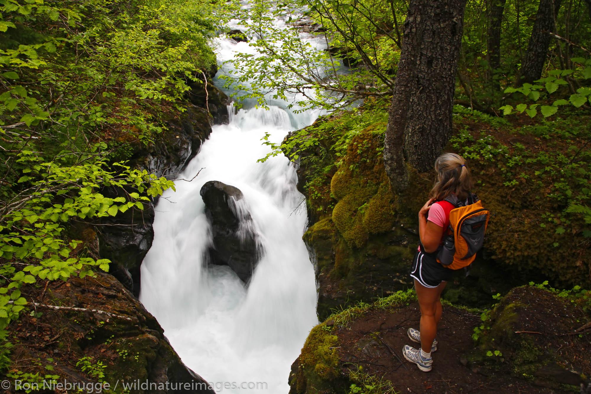 A hiker views the Winner Creek Gorge, Winner Creek Gorge Trail, Girdwood, Chugach National Forest, Alaska. (MR)