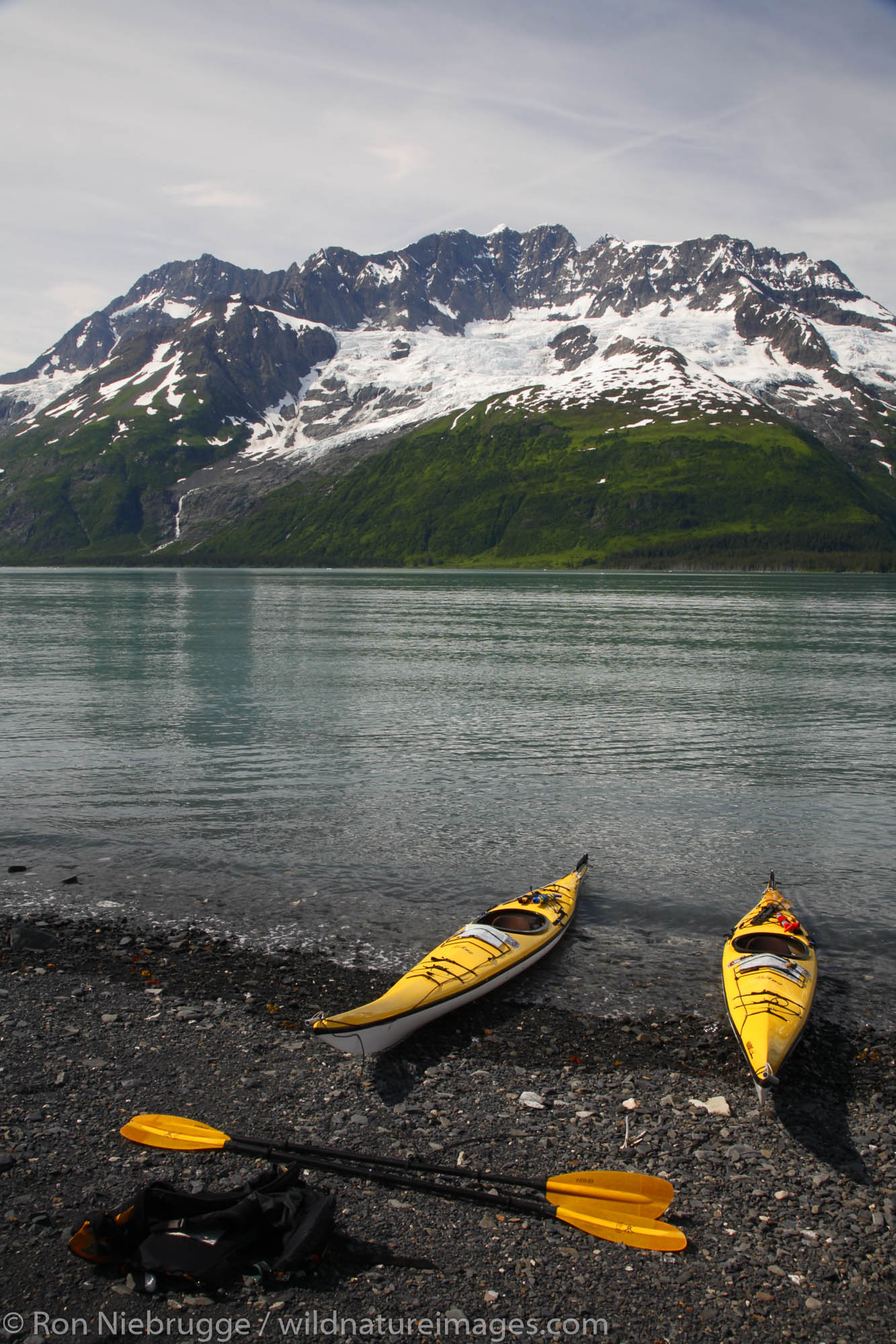 Forest Service kayak patrol in Harriman Fiord, Prince William Sound, Chugach National Forest, Alaska.