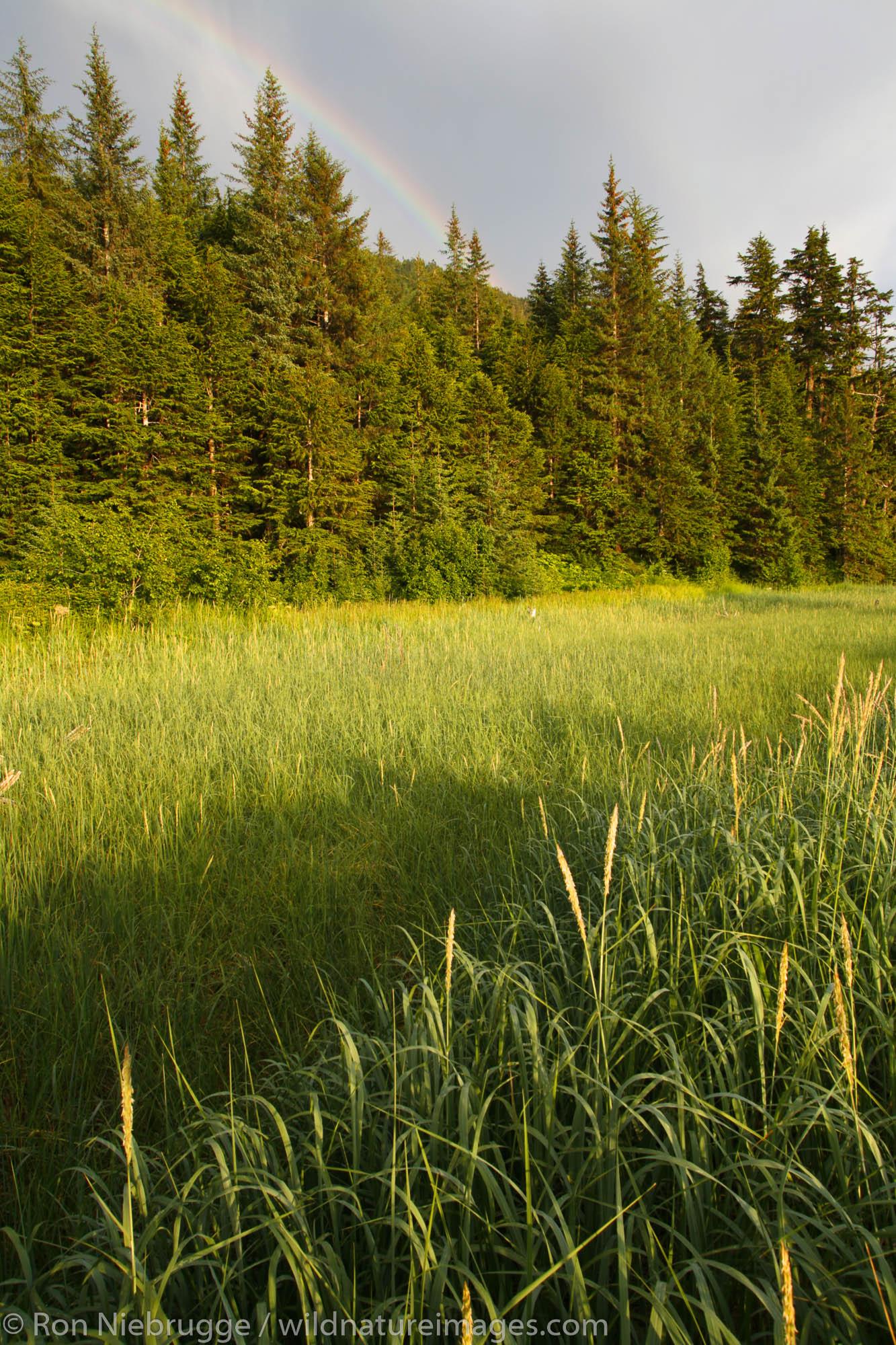 A rainbow, Barry Arm, Prince William Sound, Chugach National Forest, Alaska.