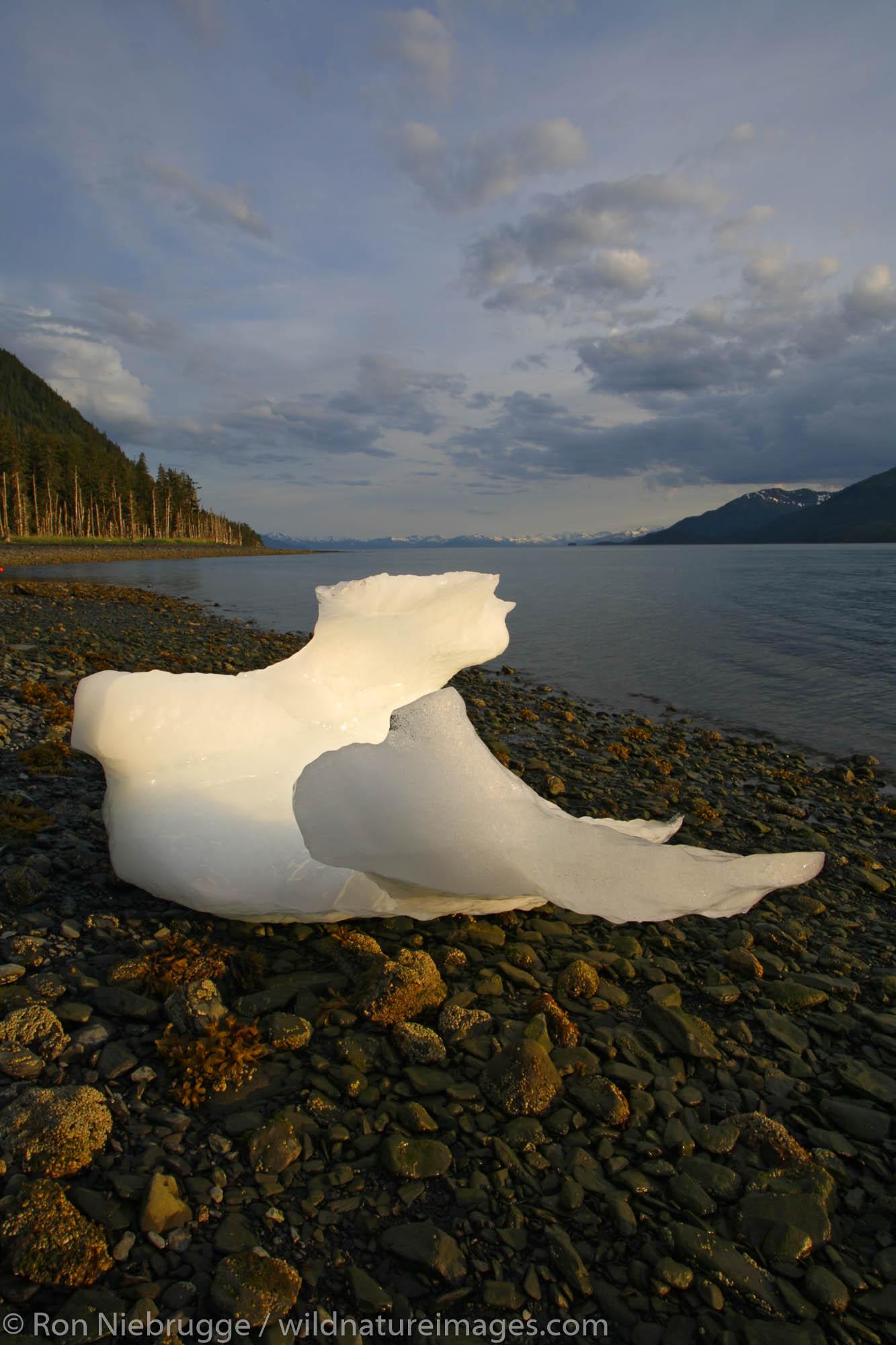 An iceberg on the beach, Barry Arm, Prince William Sound, Chugach National Forest, Alaska.