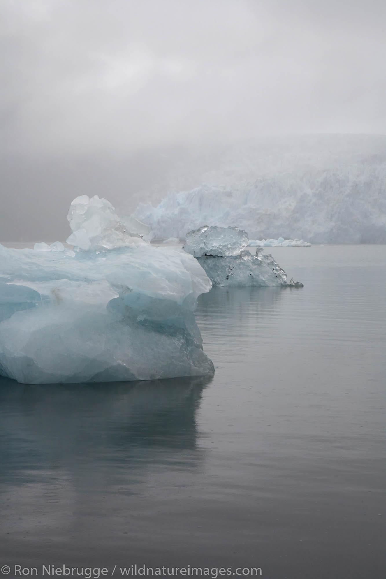 An iceberg in front of Surprise Glacier, Harriman Fiord, Harriman Fiord, Prince William Sound, Chugach National Forest, Alaska...