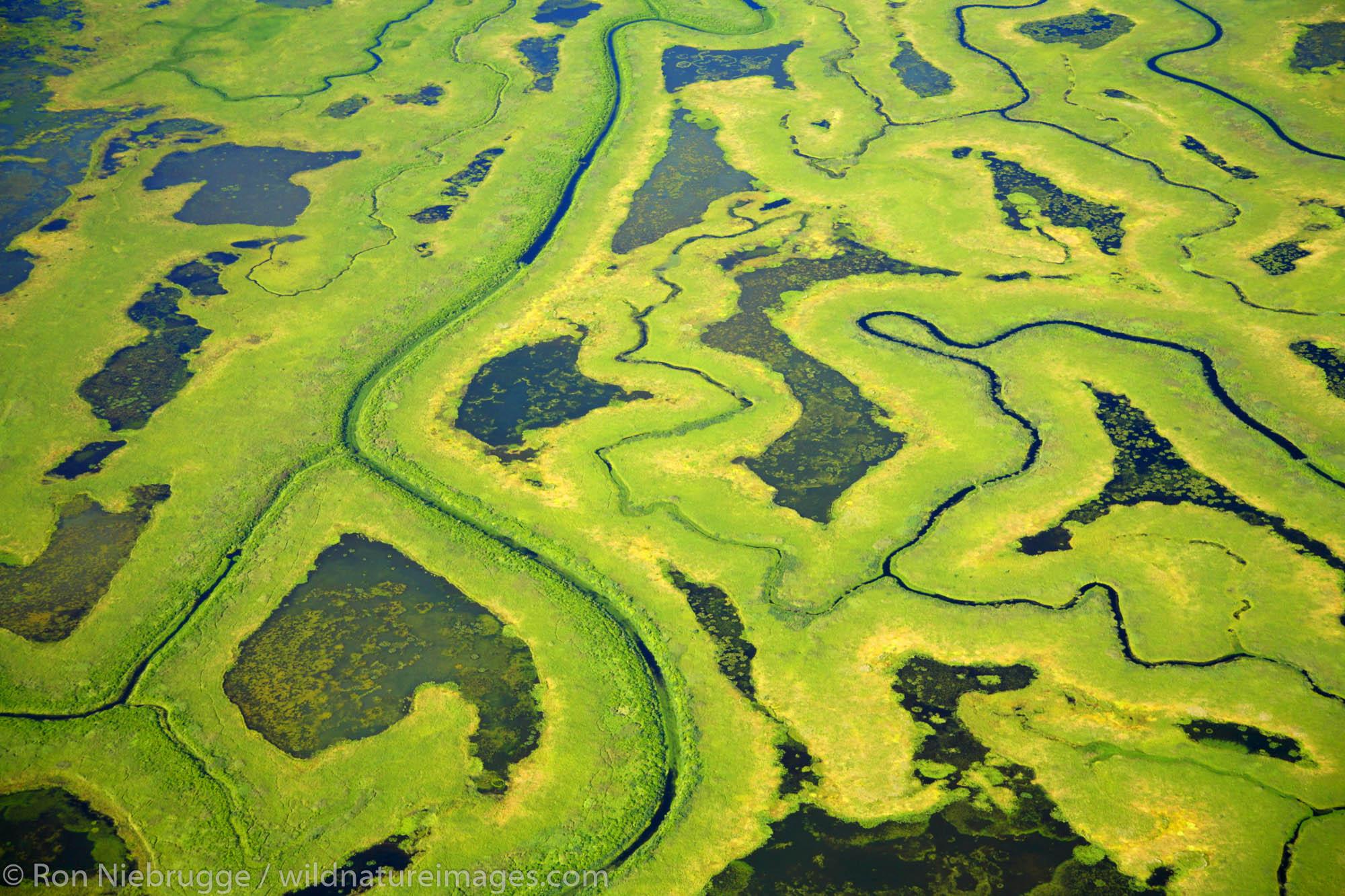 copper river delta, alaska, photo