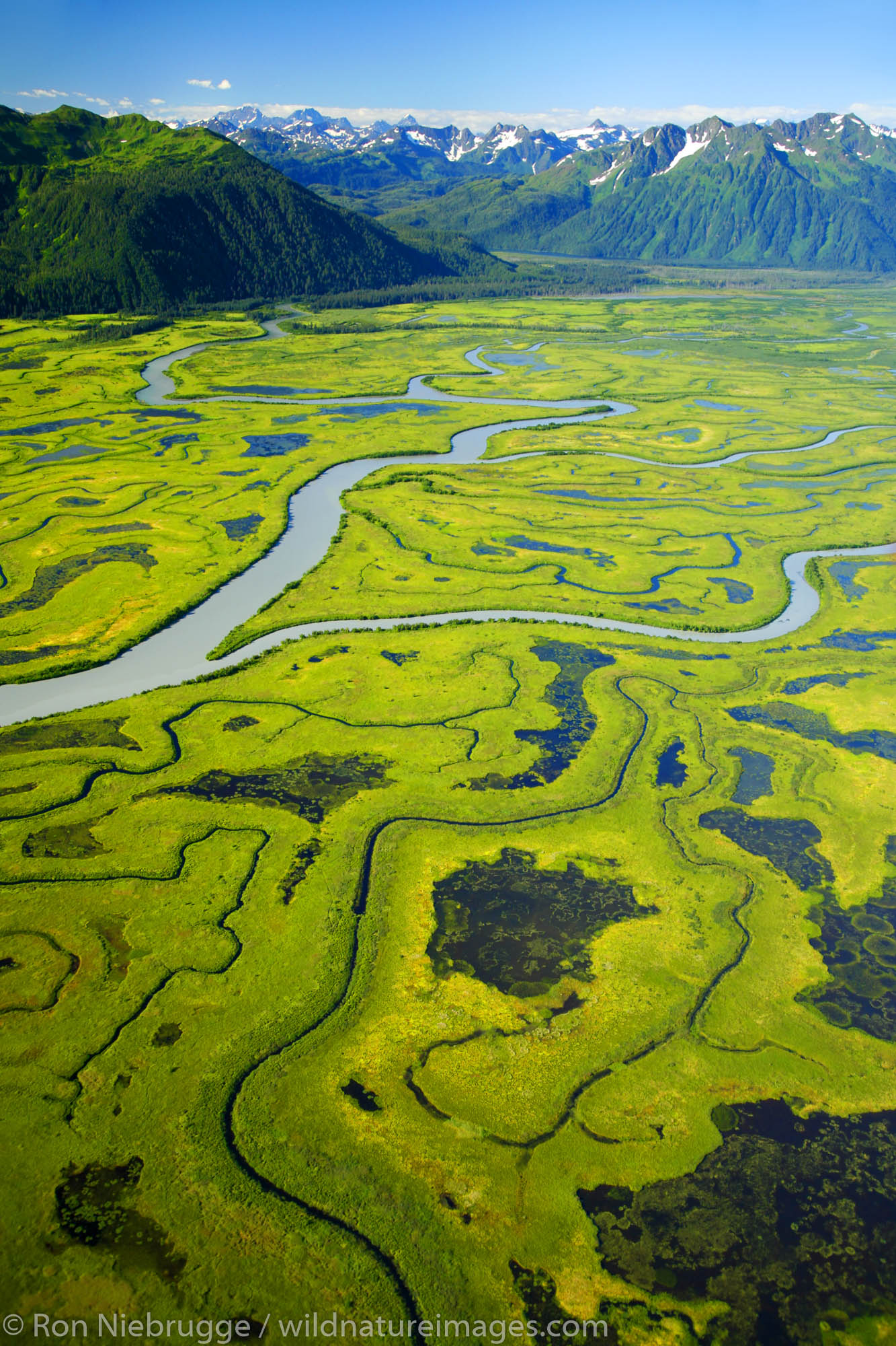 Chugach National Forest, Alaska Chugach, Copper River Delta, photo