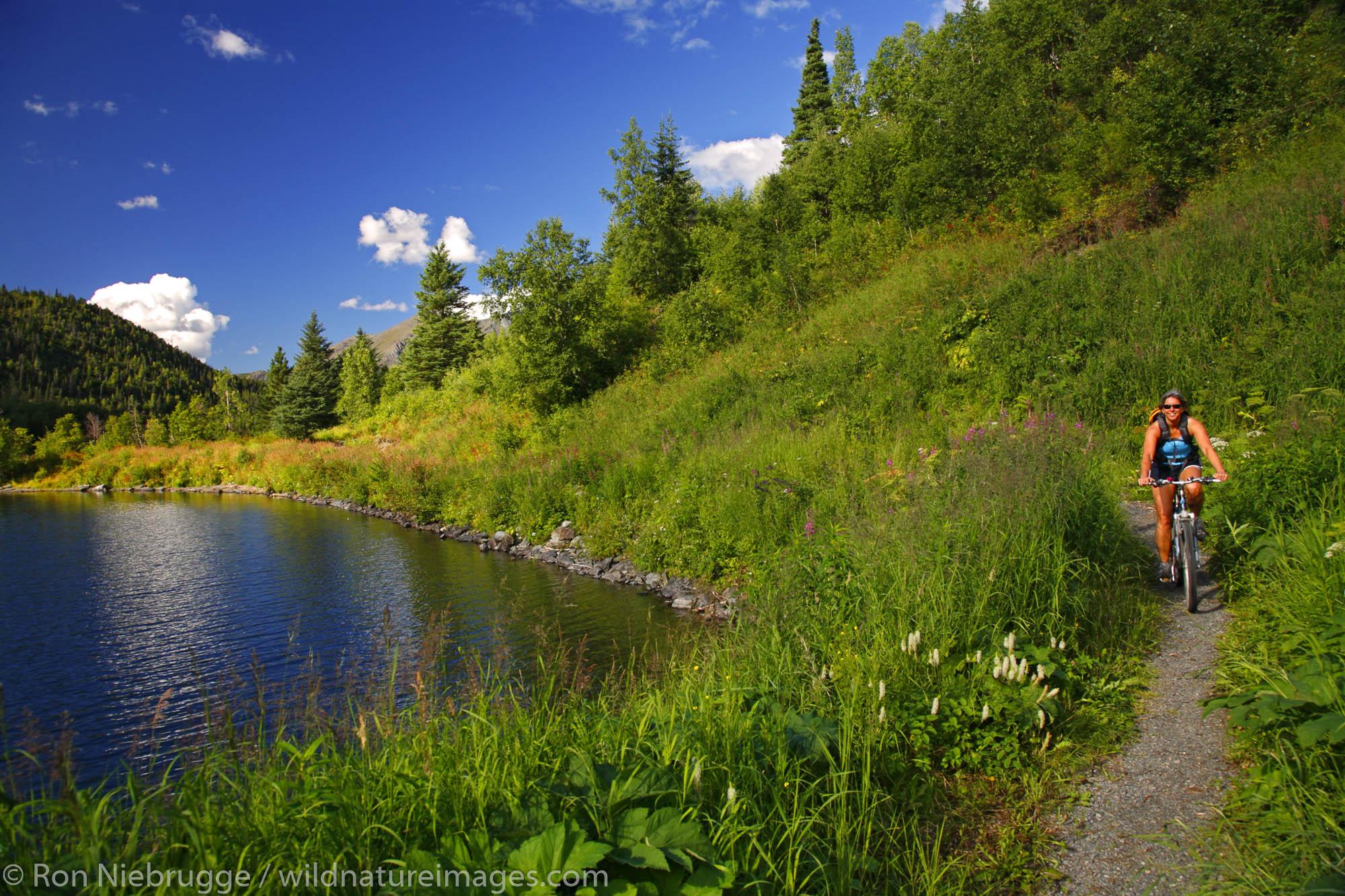 Mountain Biking on the  Russian Lakes-Resurrection River Trail, Kenai Peninsula, Chugach National Forest, Alaska. (MR)