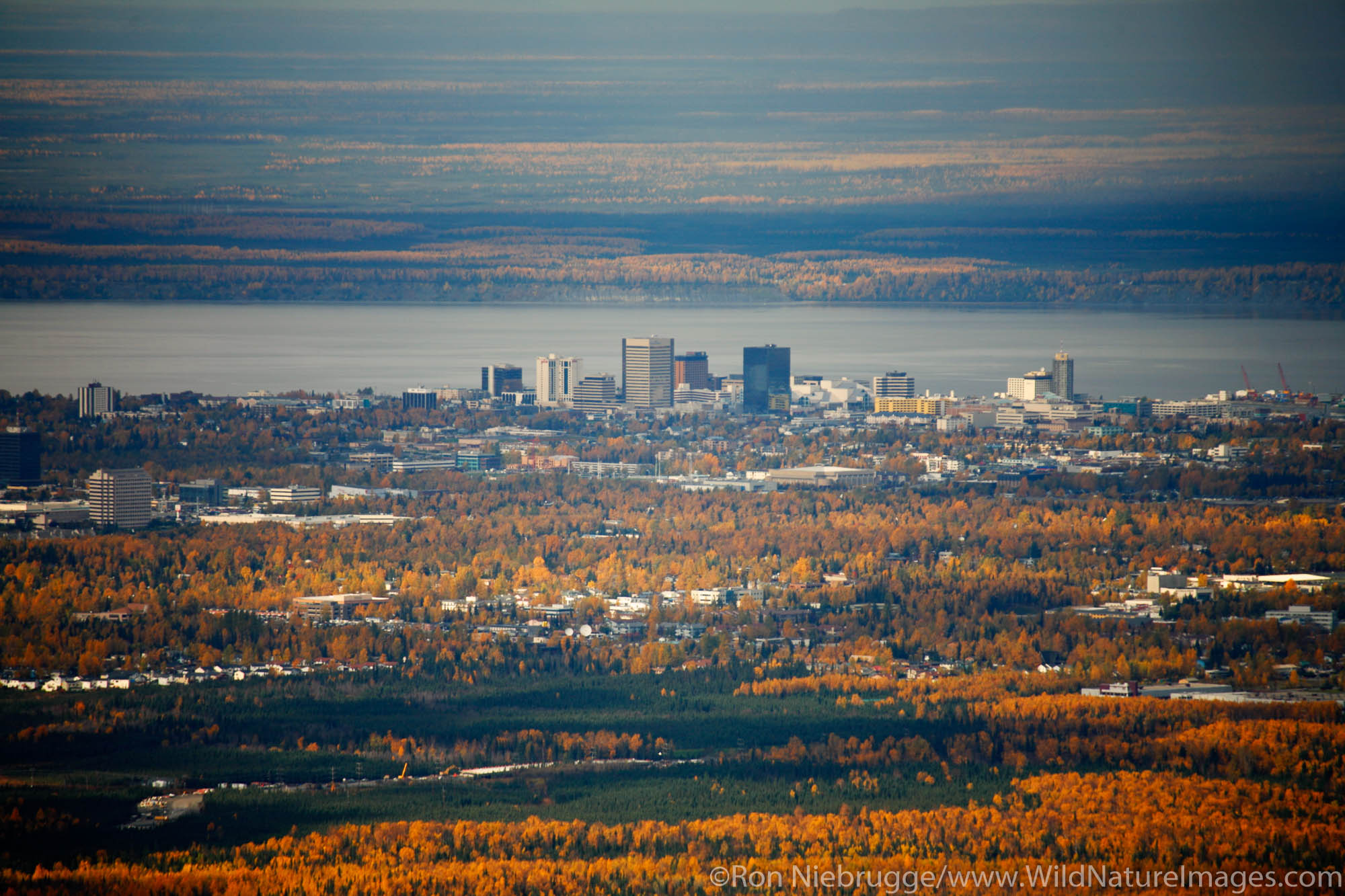 View from the hillside during the fall of Anchorage, Alaska.