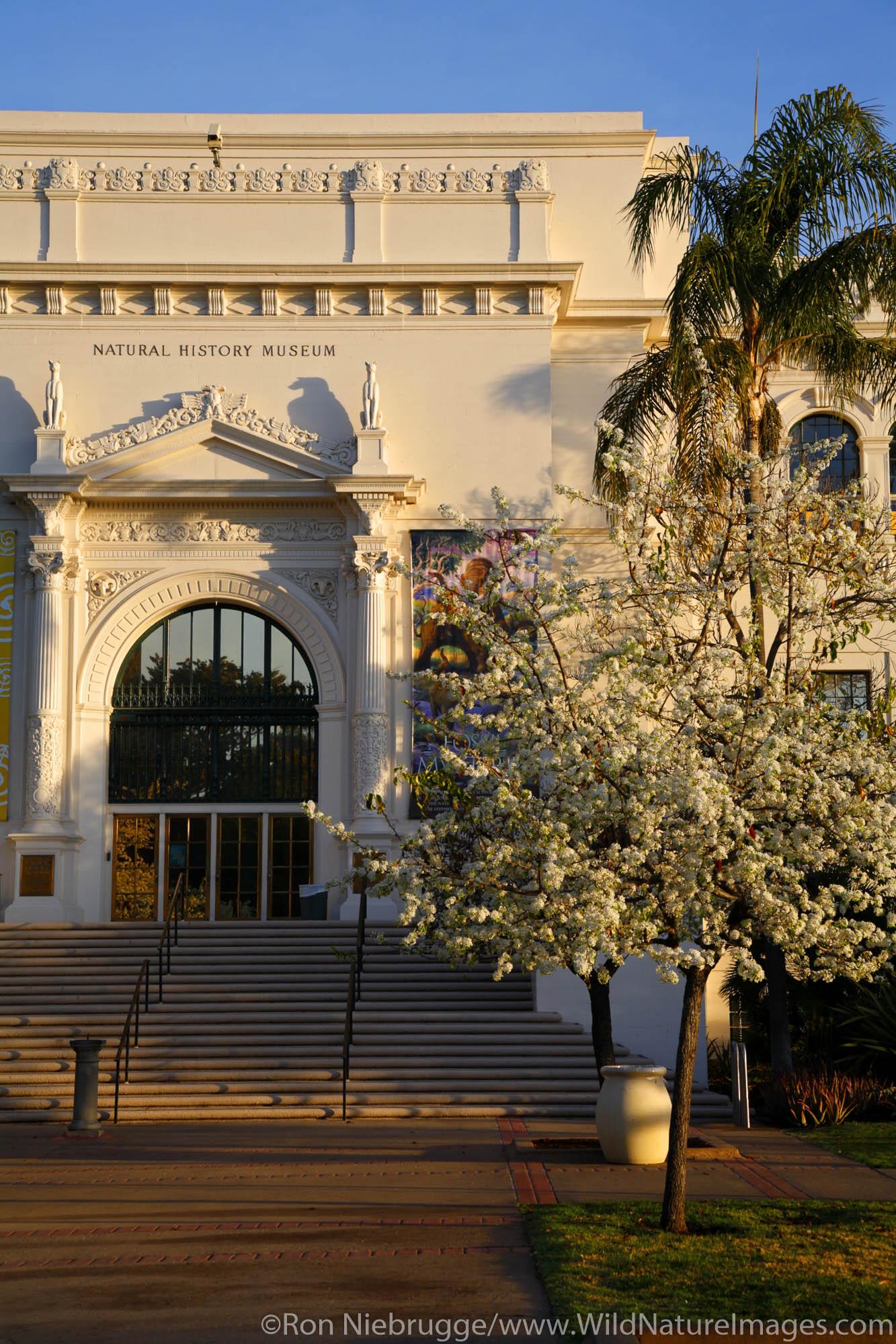The San Diego Natural History Museum, Balboa Park, San Diego, California.