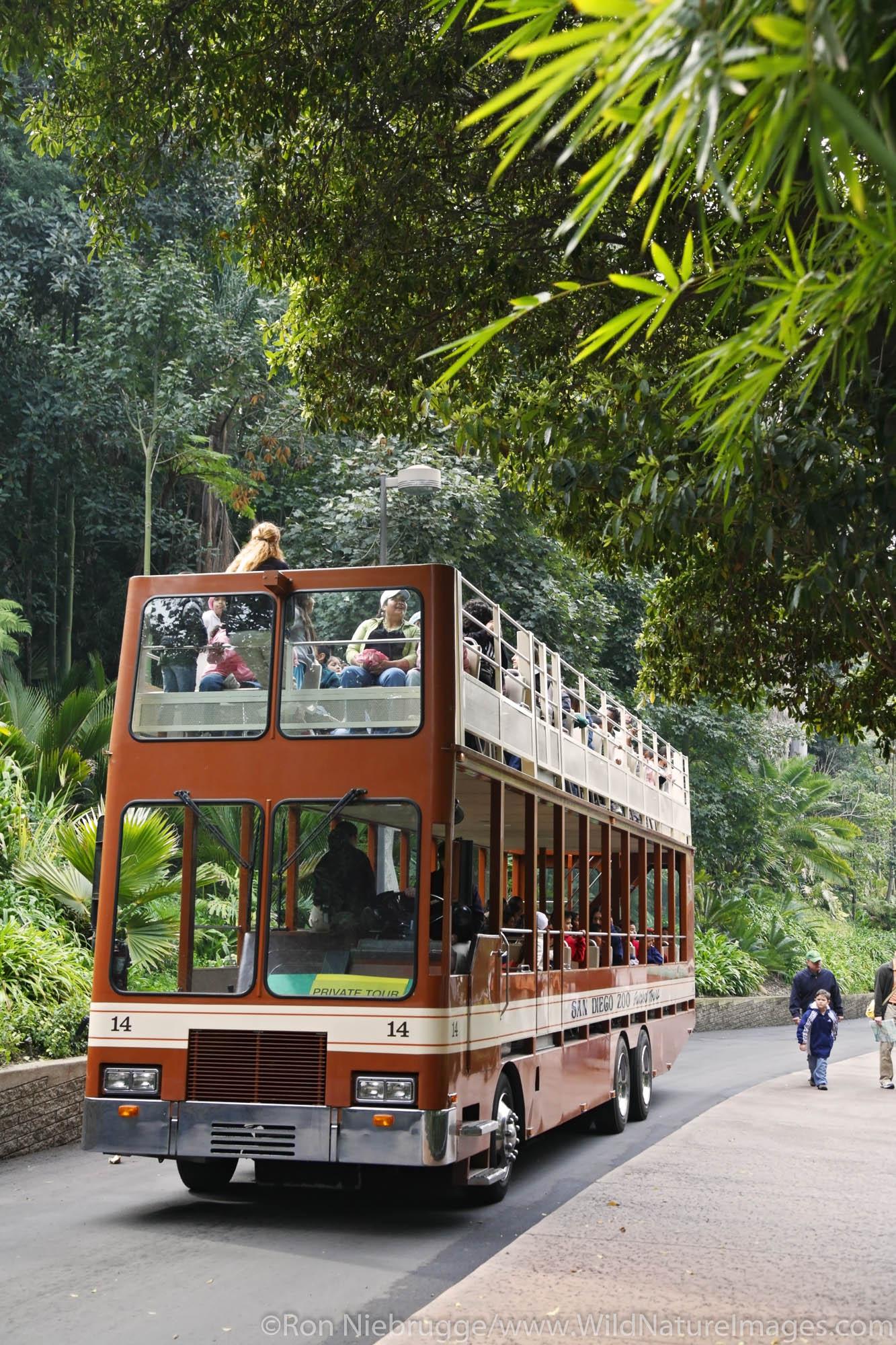 Tour bus at the San Diego Zoo in Balboa Park, San Diego, California.