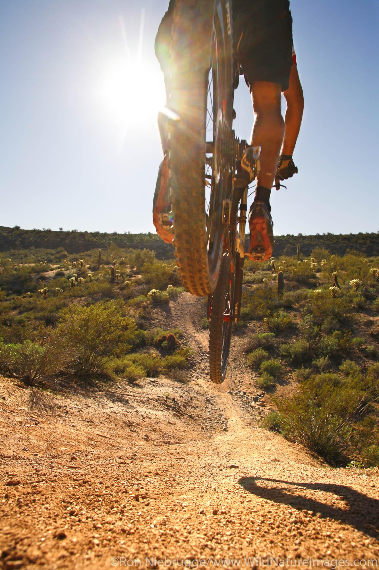 Fountain Hills, Arizona, photo
